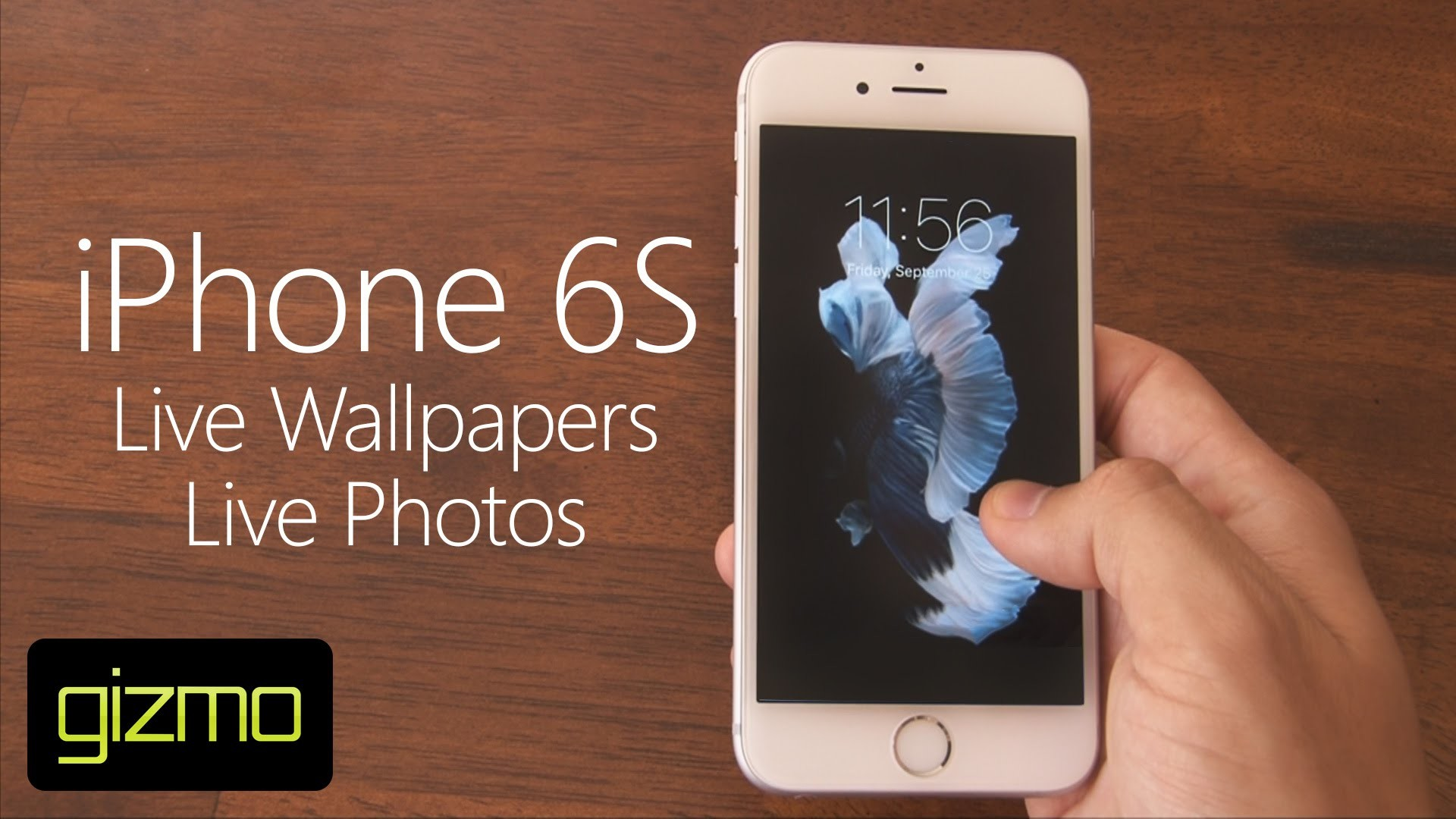Live Photo Wallpaper IPhone 6S (84+ Images