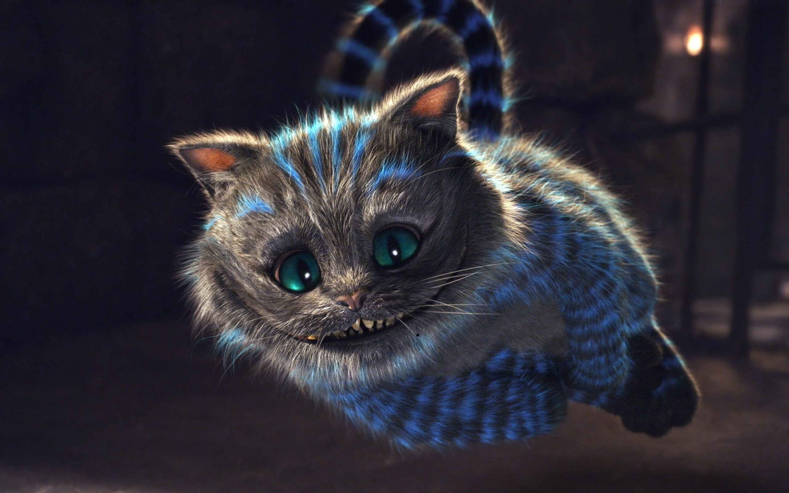 2560x1600 alice in wonderland cat mystical smile wallpaper image