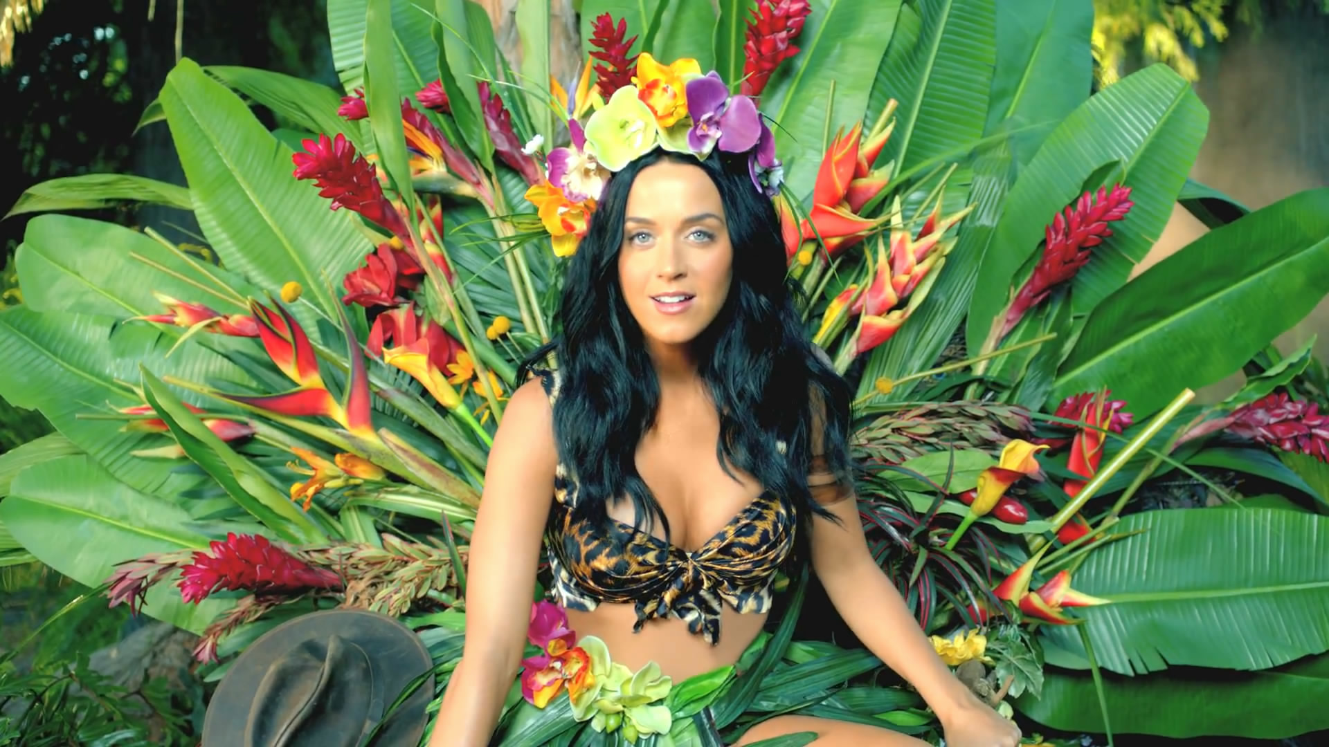 Katy Perry Roar Wallpaper (69+ images)