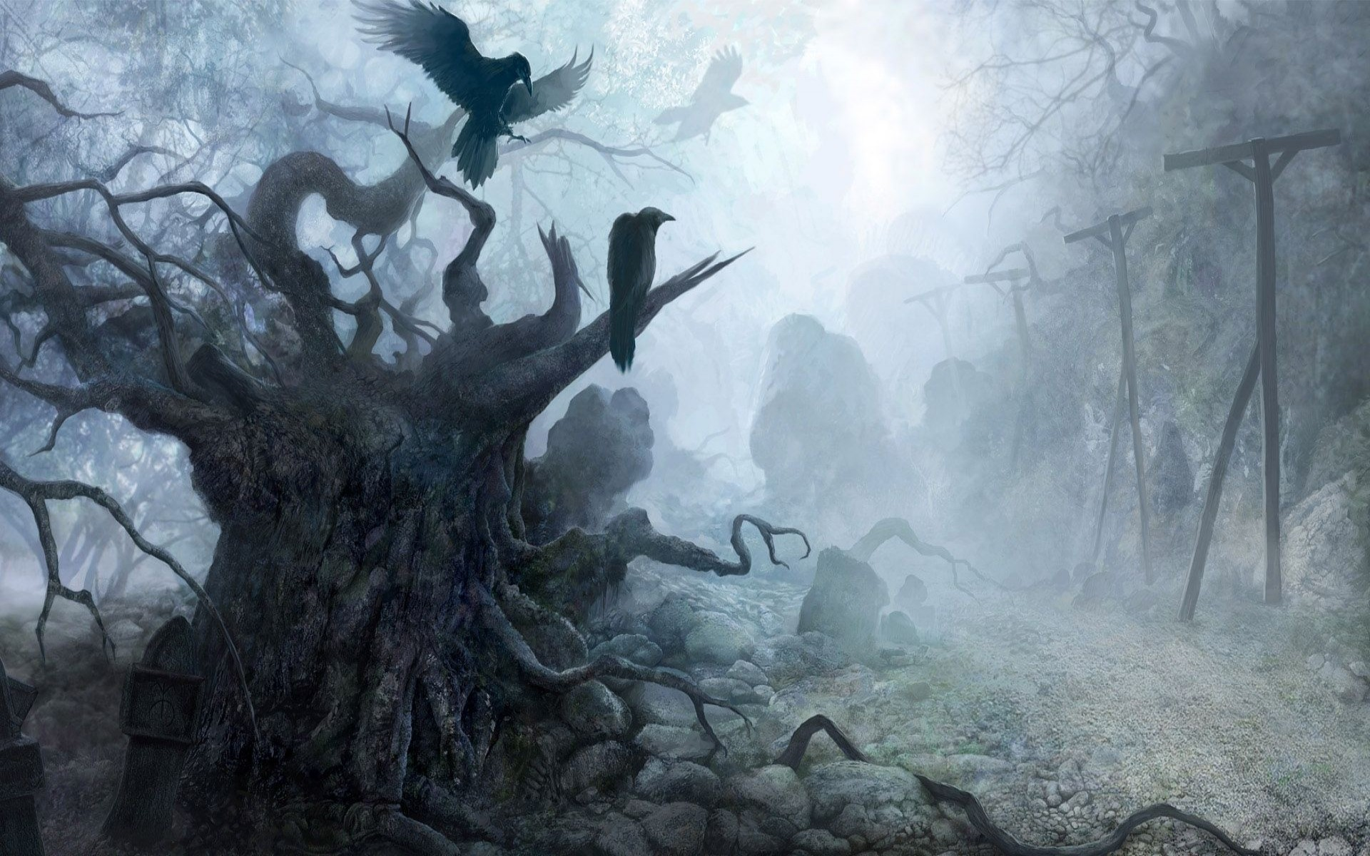Haunted Forest Wallpaper 59 Images