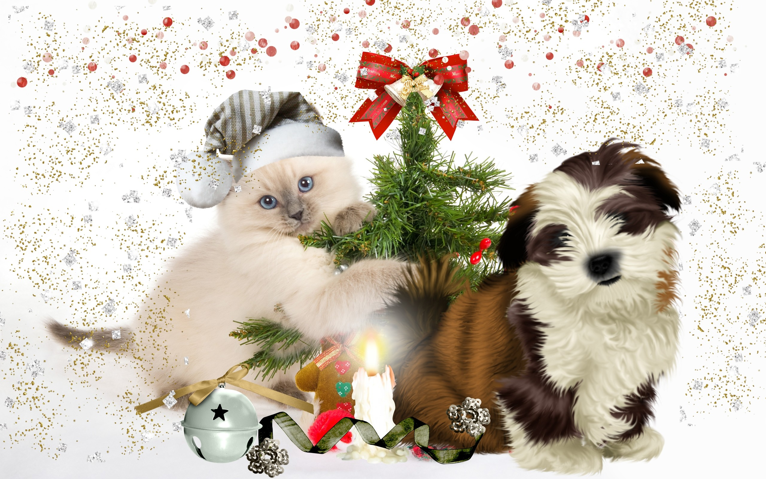 christmas dogs wallpapers (51+ images)