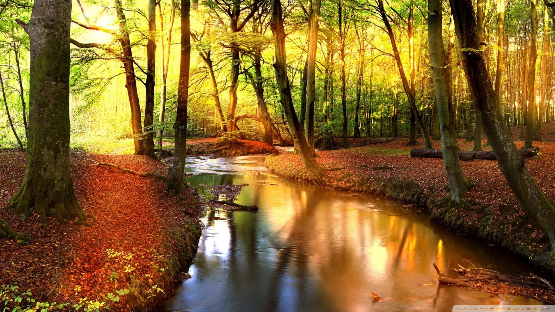 Autumn Landscape Wallpaper (69+ images)