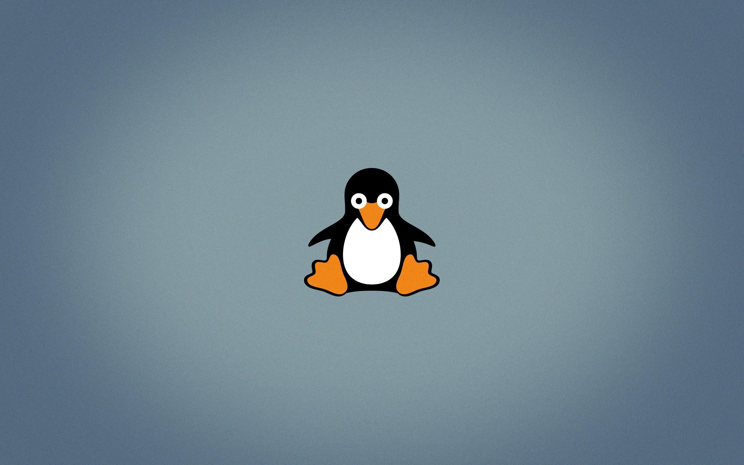 Linux Tux Wallpaper (59+ images)