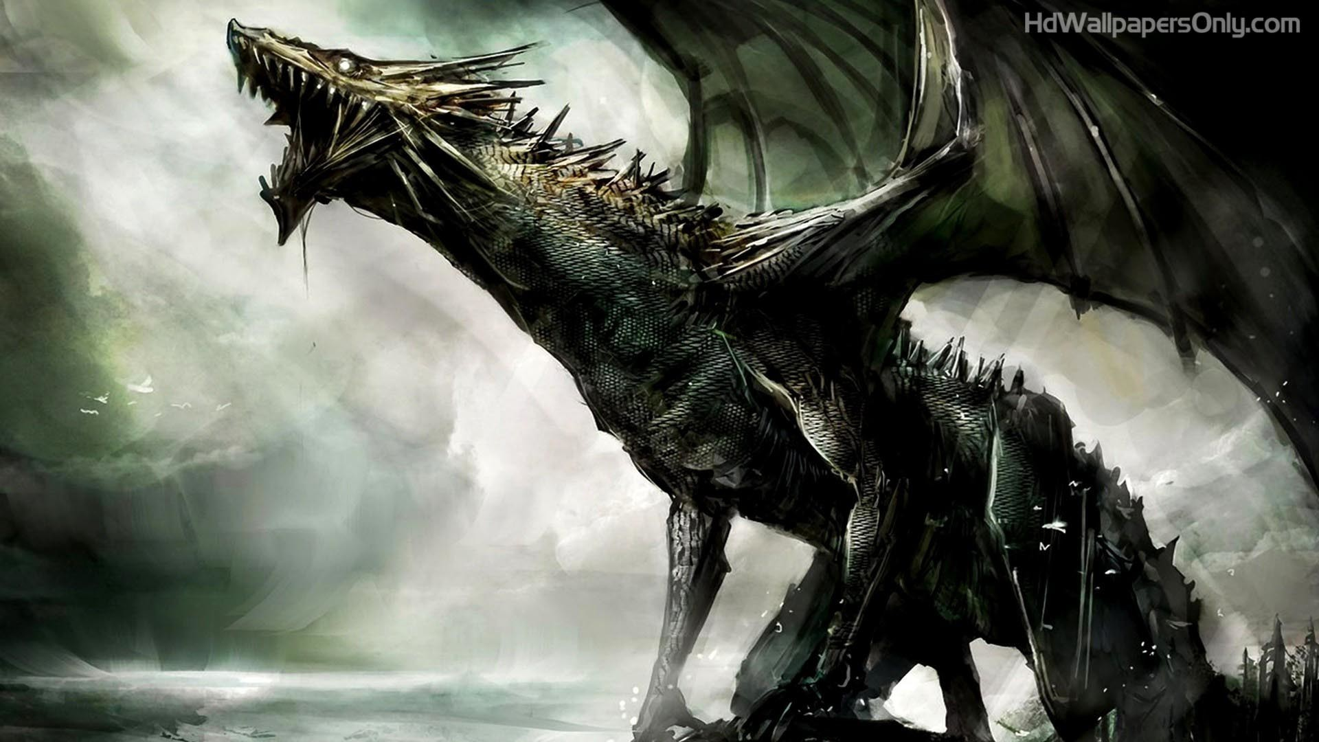 1920x1080 Black Dragon HD Wallpaper | 4hotos