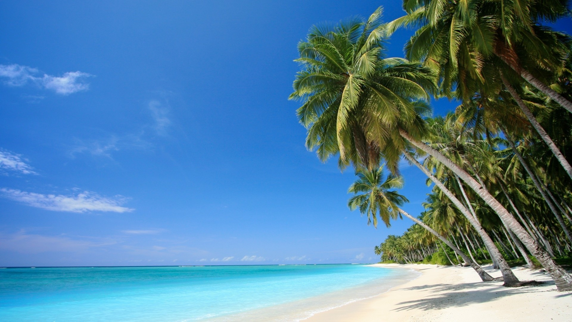 1920x1080 Beach Scene Wallpapers Tropical Themes 1920×1080