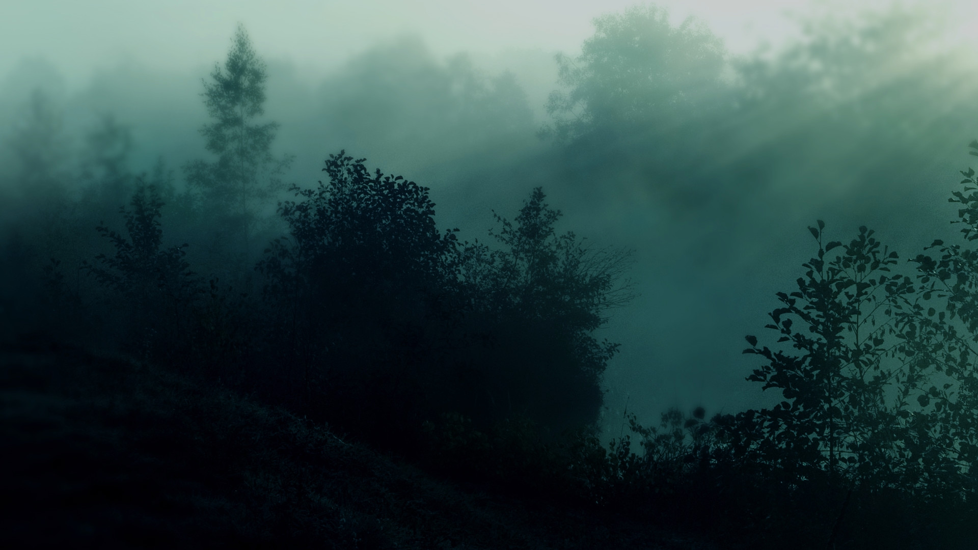1920x1080 teal wallpapers hd dark forest