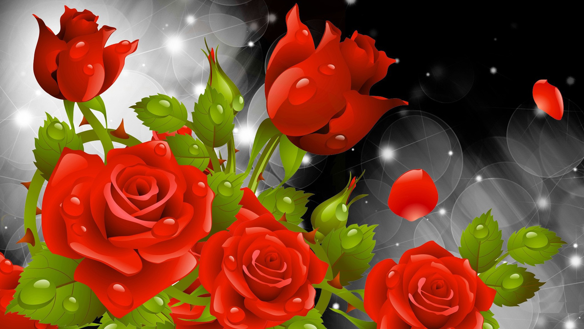 Red Rose Wallpaper 72 Images