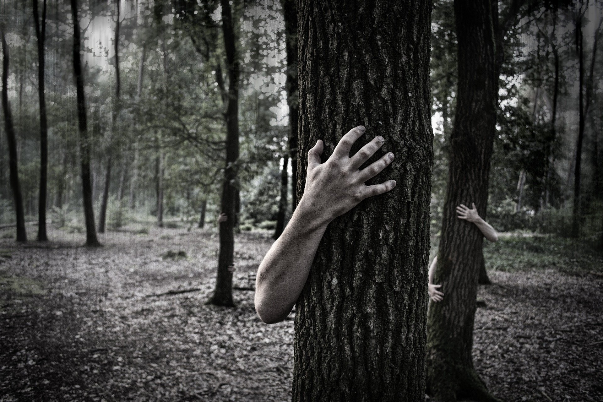 1920x1280 Hands Trunk Creepy Zombie Forest Horror Scary Forest Wallpaper At Dark  Wallpapers