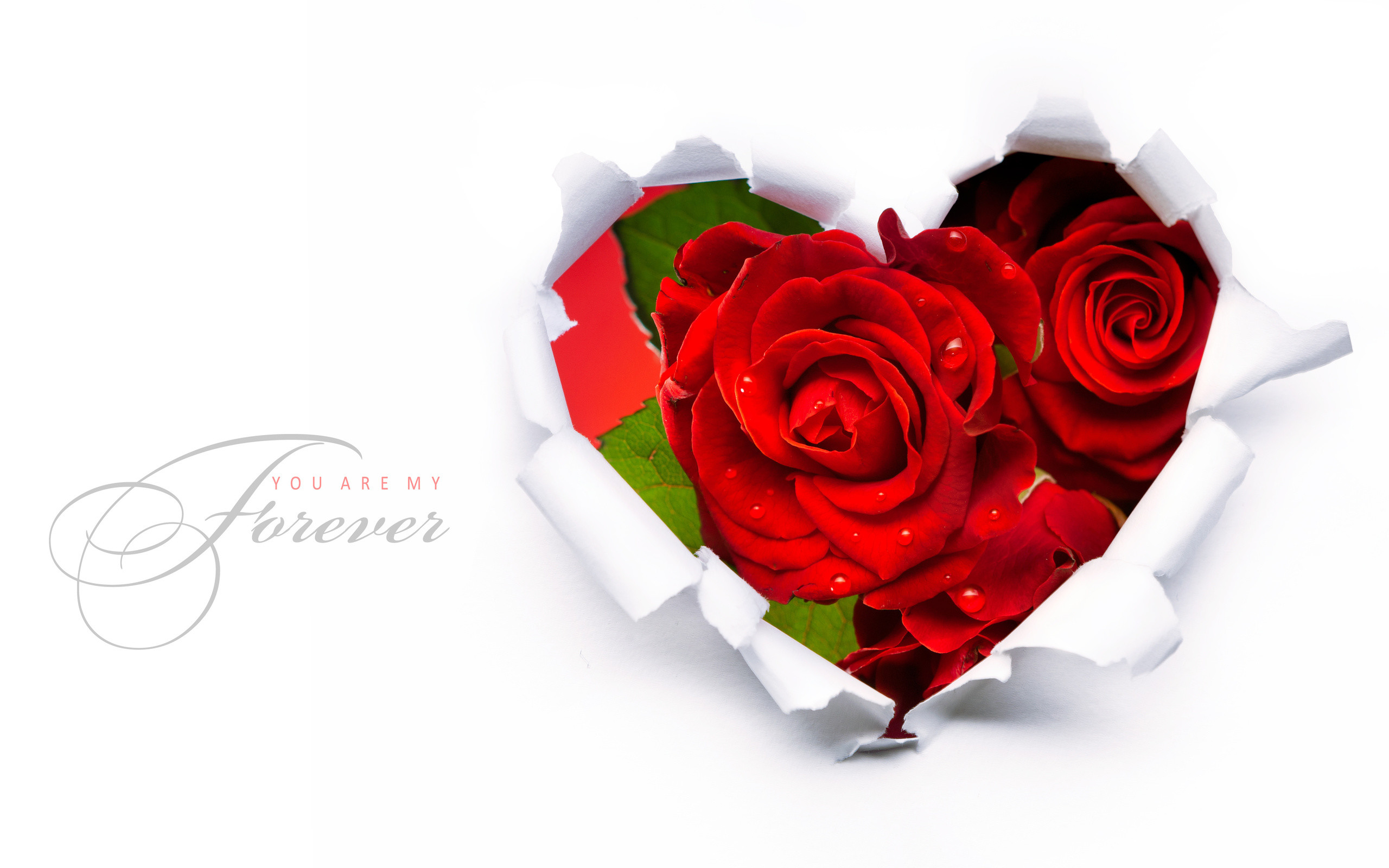 2560x1600 Red Roses In A Heart Shape Wallpapers -  - 581420