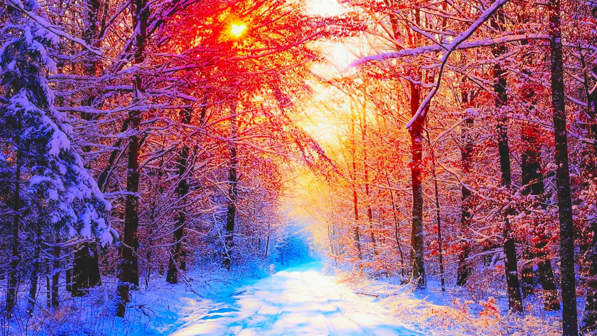 Pretty Winter Backgrounds (51+ Images