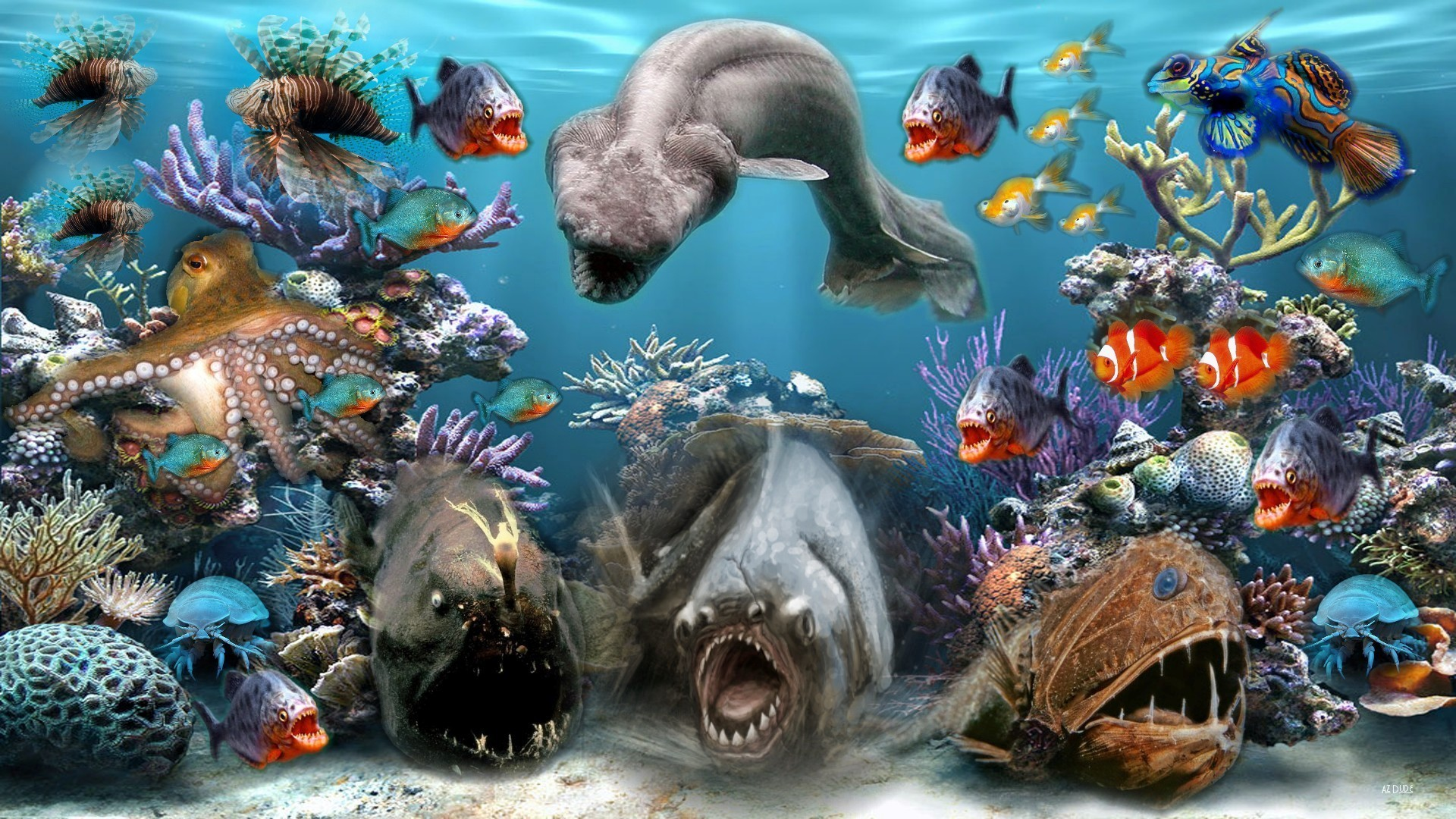 Top 27 Sea Animals Wallpapers In Hd: Sea Creatures Wallpaper (53+ Images