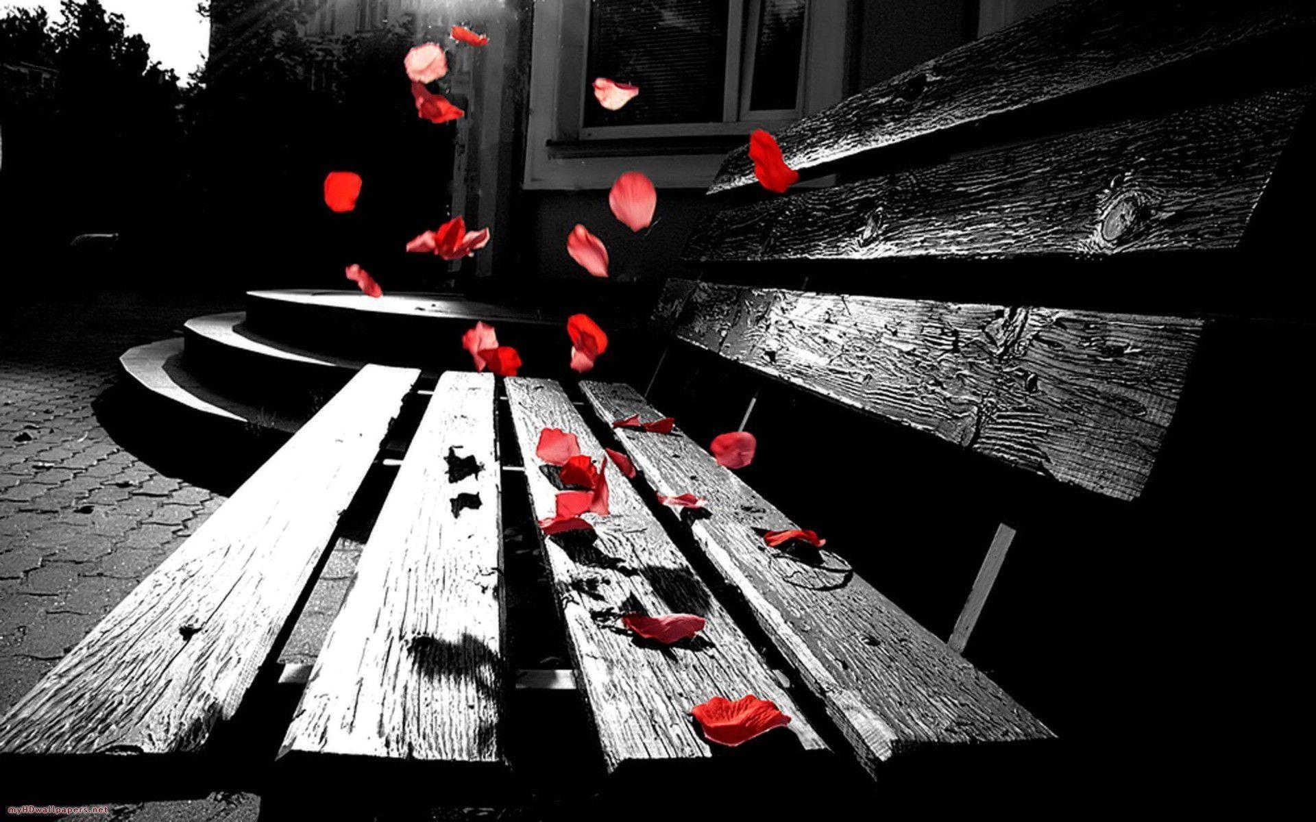 Romantic Backgrounds 55 Images