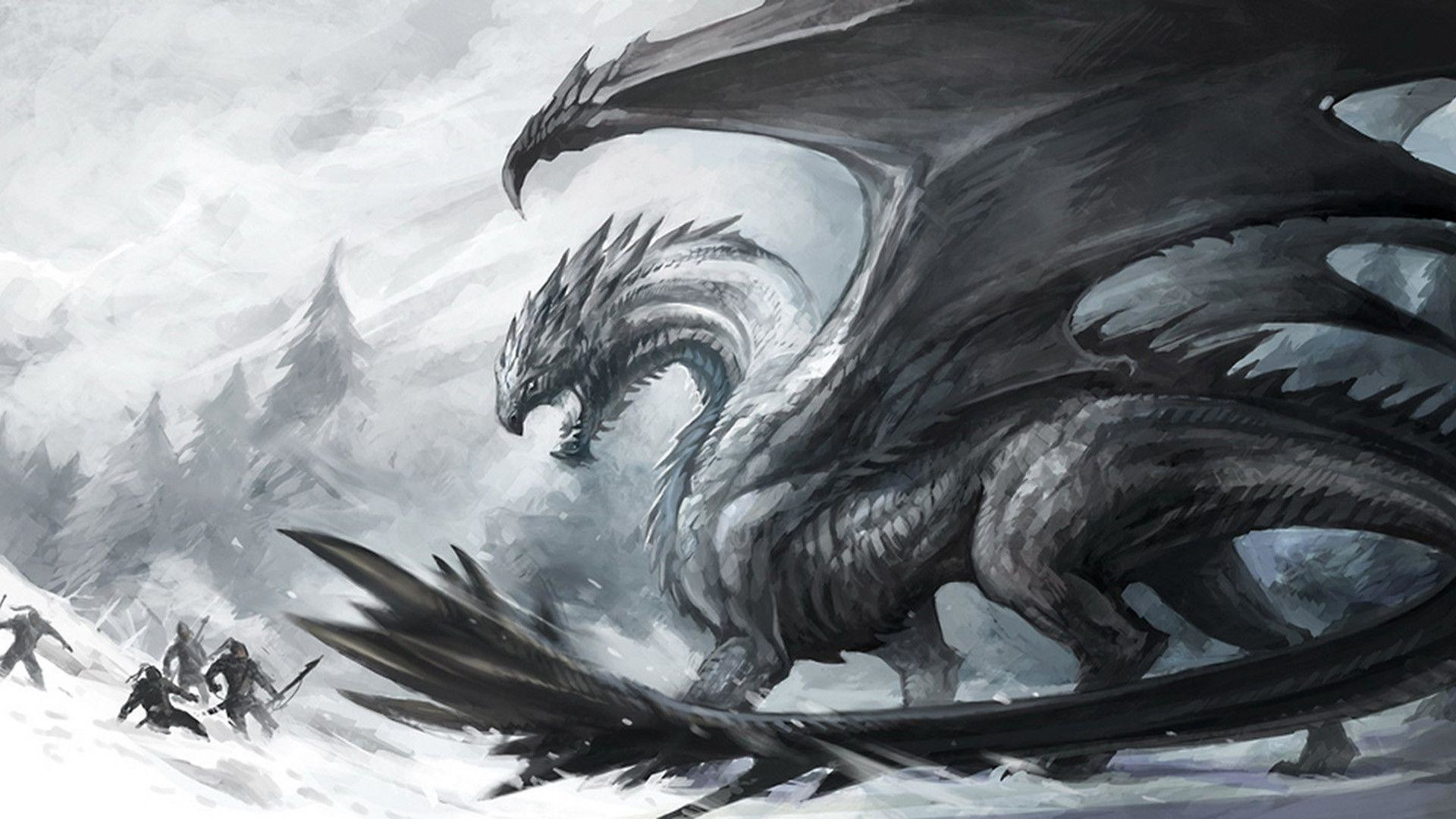 Black And White Dragon Wallpaper 67 Images