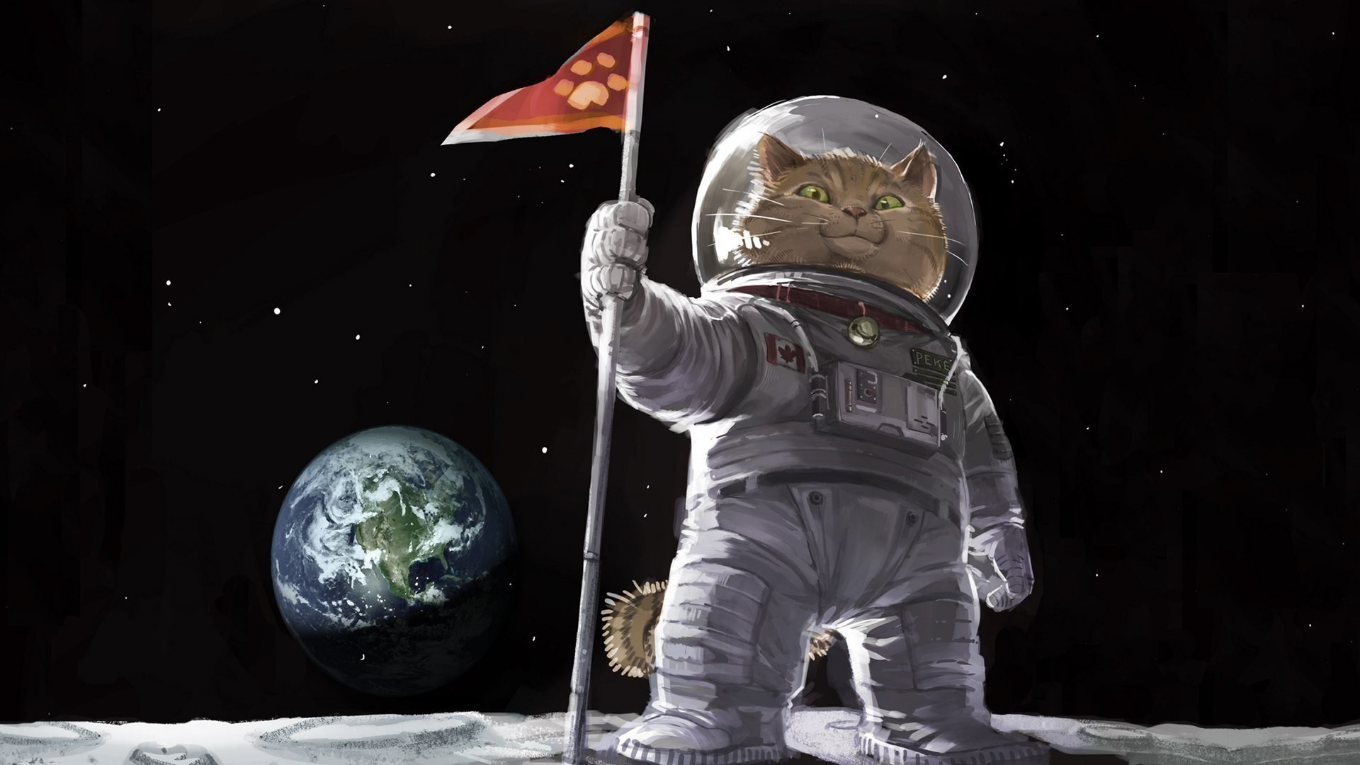 1920x1080 Cat astronaut on the moon wallpapers and images - wallpapers, pictures .