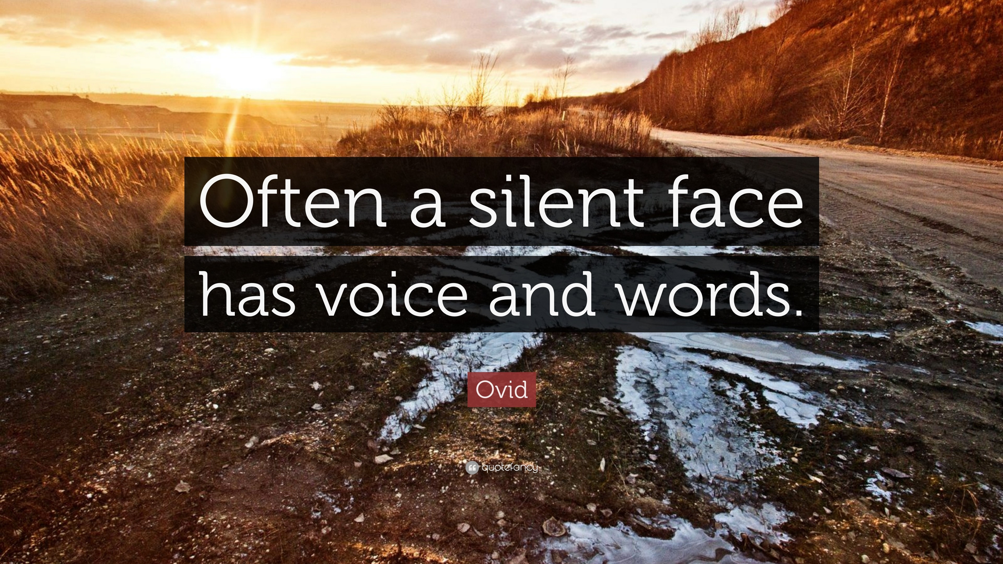 "3840x2160 Ovid Quote: ""Often a silent face has voice and words."""