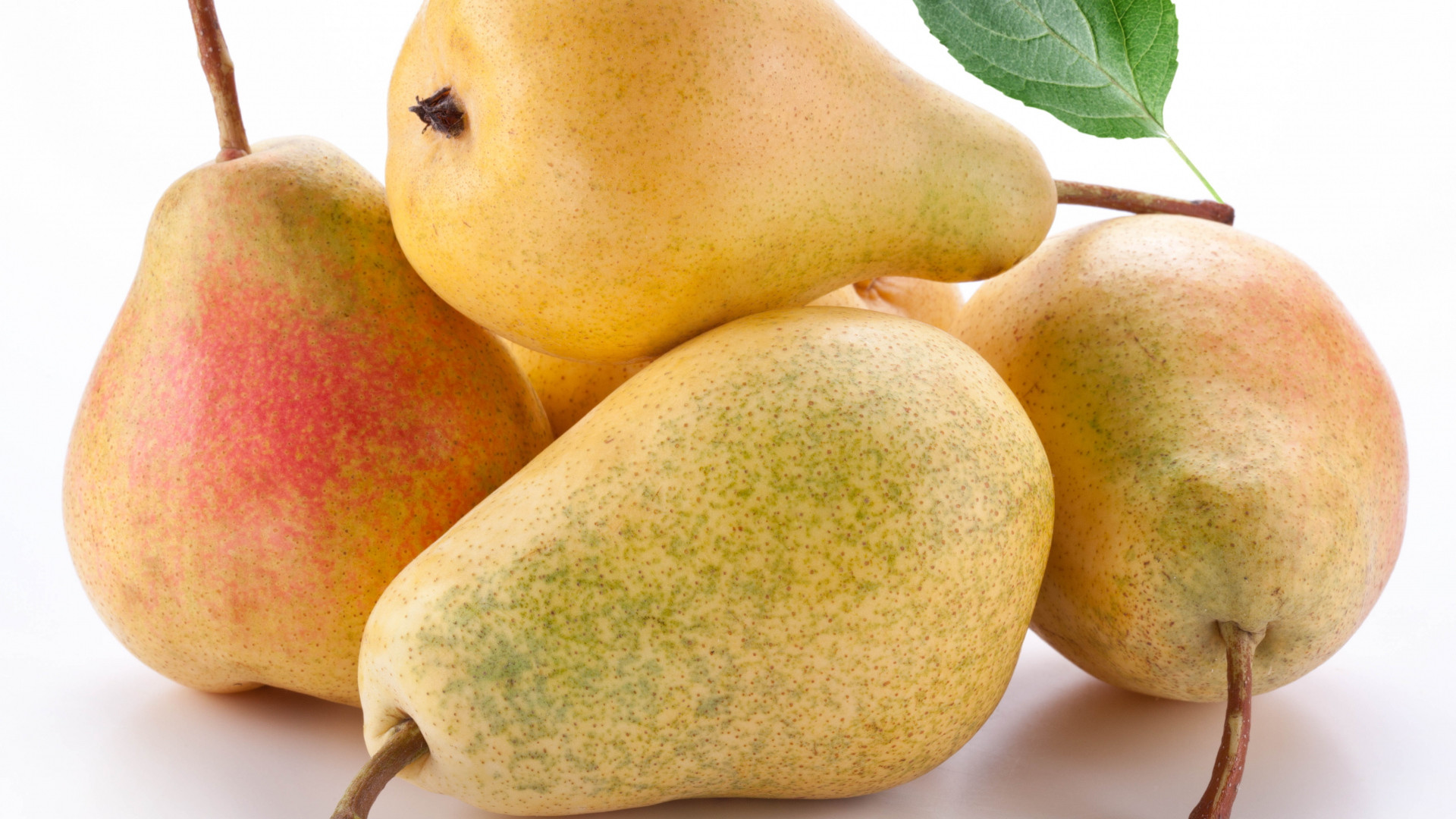 1920x1080  Wallpaper pear, white background, fruits