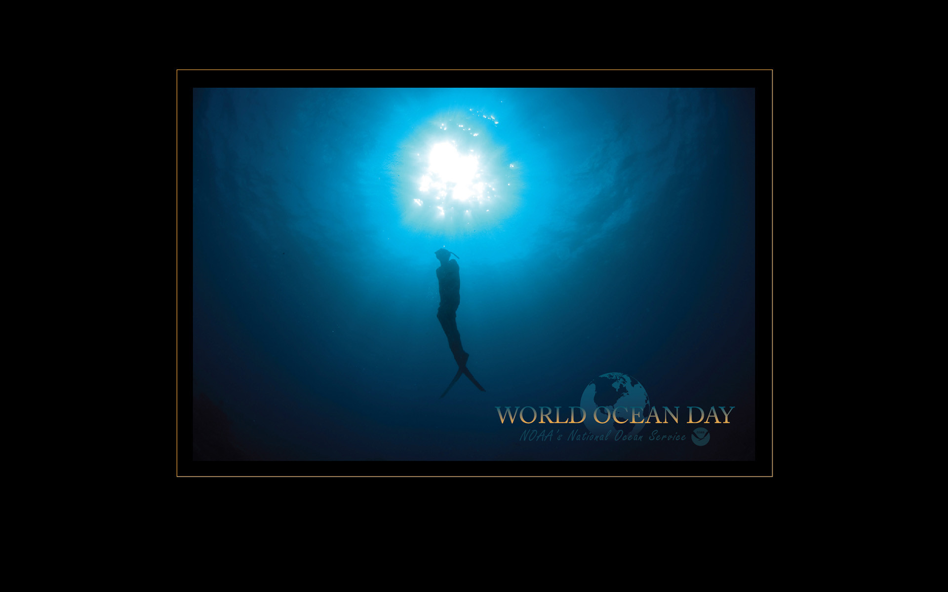 1920x1200 World Ocean Day (Greg McFall)