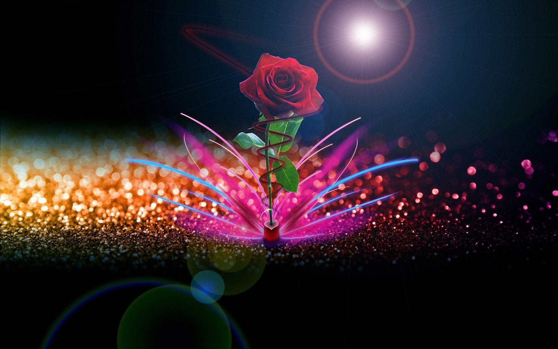 1080x1920 Beautiful Garden Red Roses Flowers #iPhone #6 #plus #wallpaper