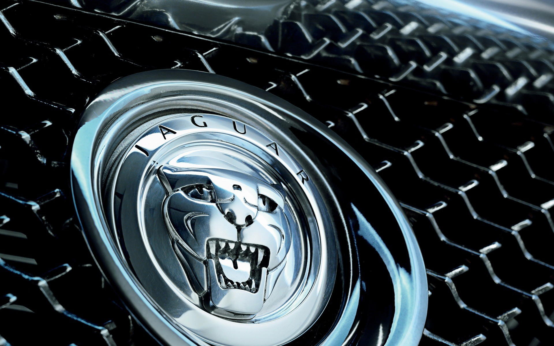 Jaguar Wallpapers 63 Images