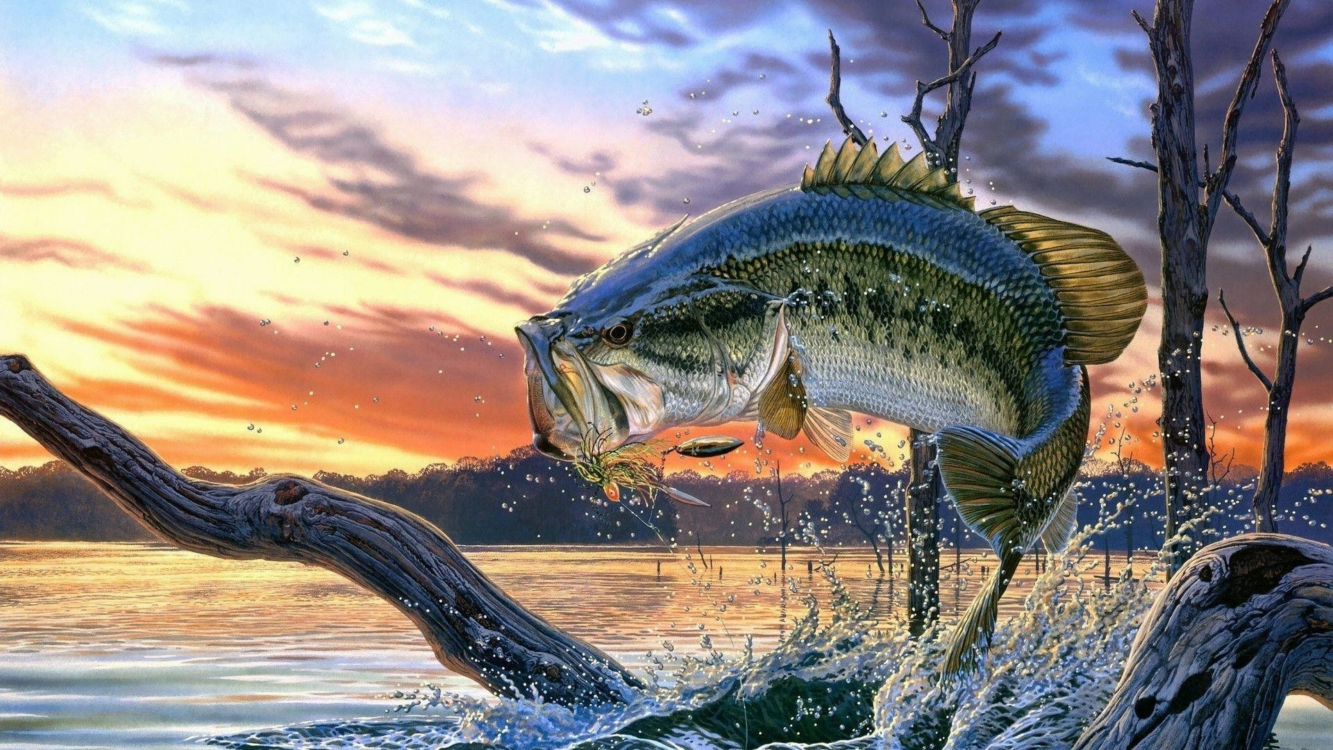 Fishing wallpaper iphone
