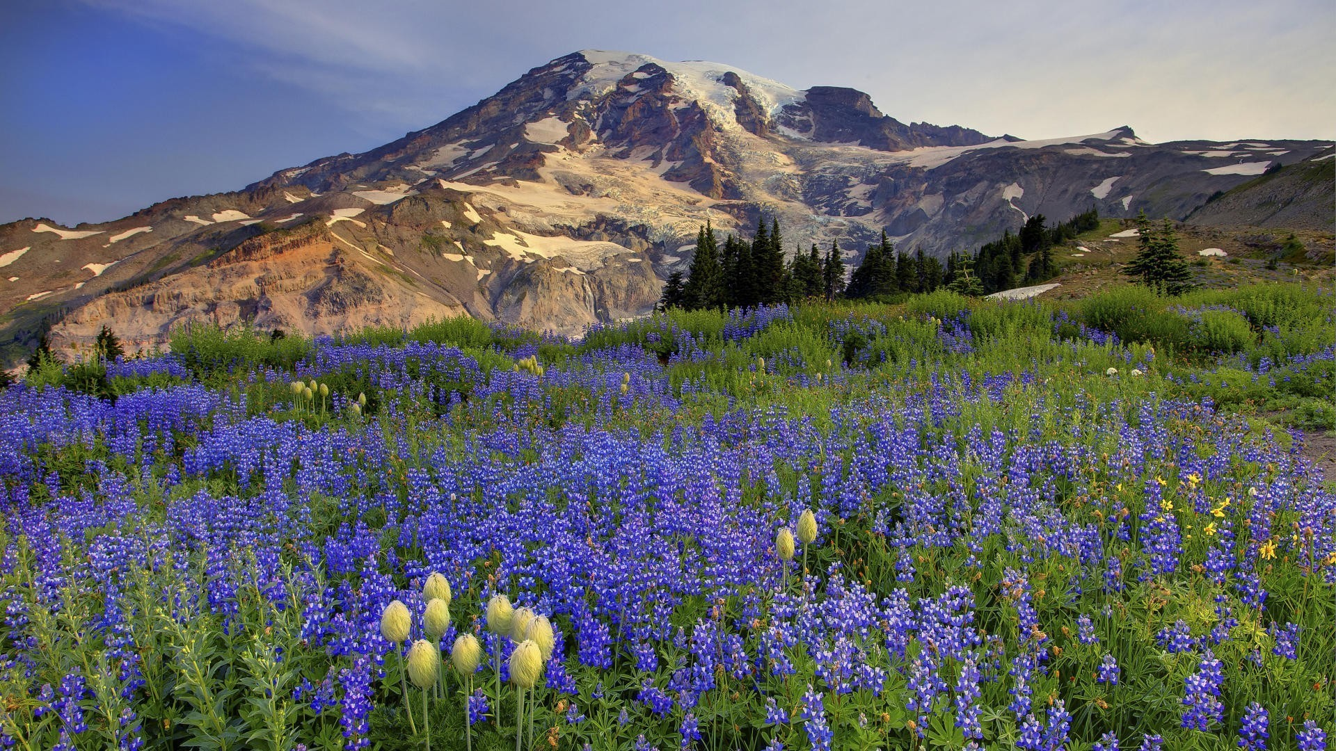 1920x1080 Mount Rainier Washington Felder wallpaper