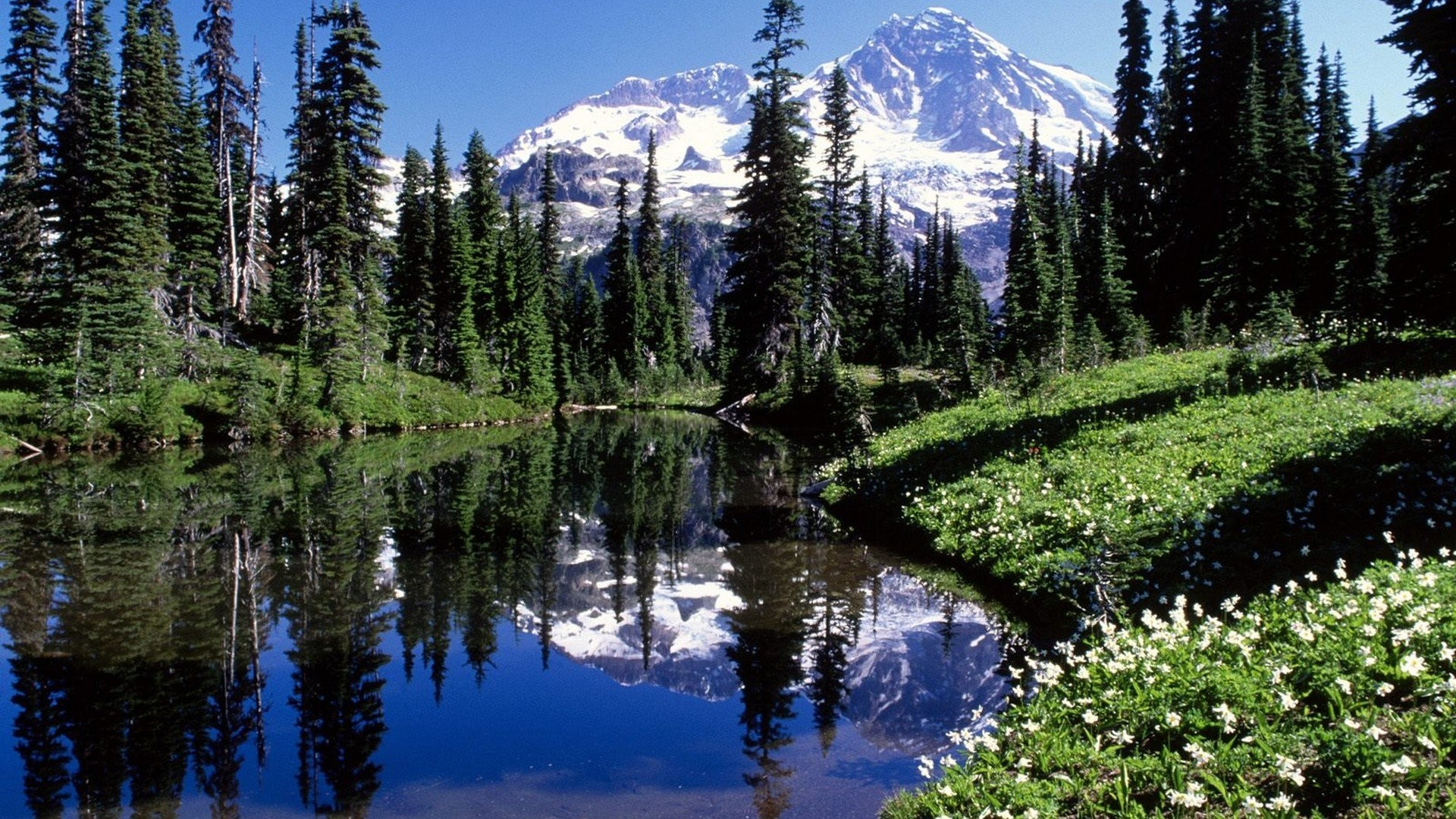 1920x1080 Mountains night mirrors lakes Washington Mount Rainier wallpaper |   | 260103 | WallpaperUP