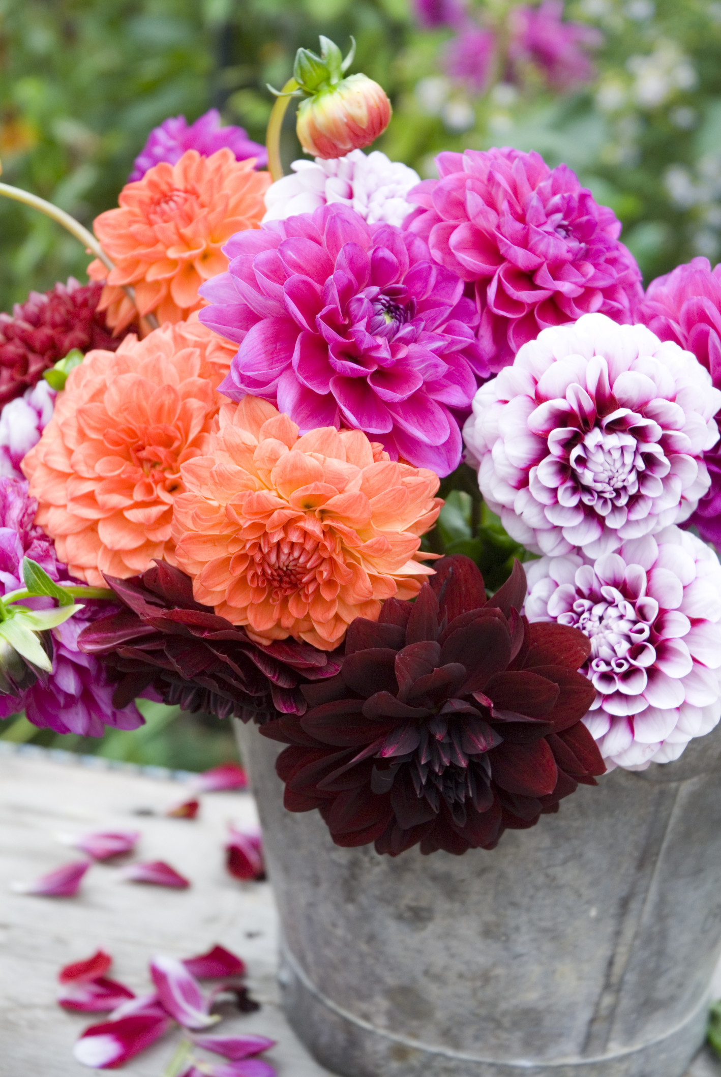 28 50 cool fall flowers d 233 cor ideas for your home digsdigs 50 cool fall flowers d 233 cor ideas for your home digsdigs beautiful fall flowers wallpaper izmirmasajfo