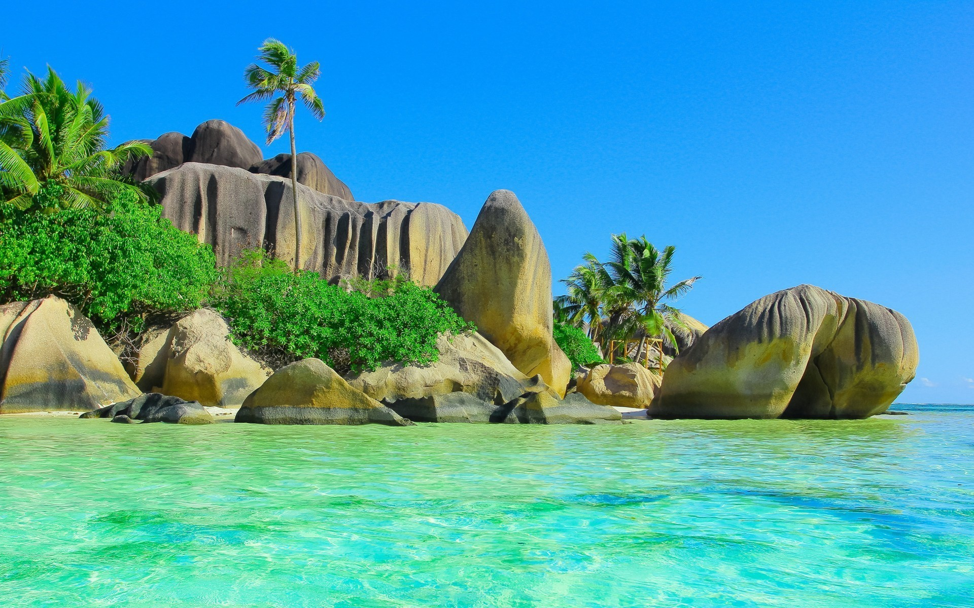 Hd Tropical Island Beach Paradise Wallpapers And Backgrounds: Tropical Island Wallpaper With Fish (49+ Images