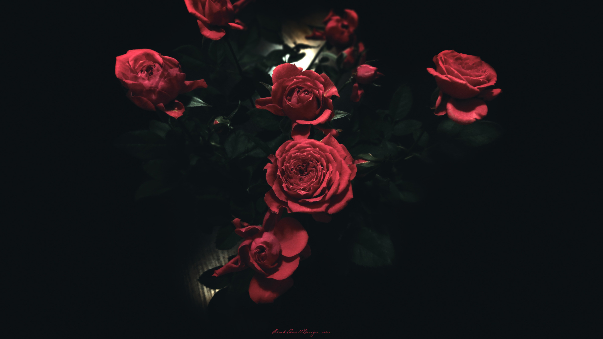 Gothic Roses Wallpaper (63+ images)
