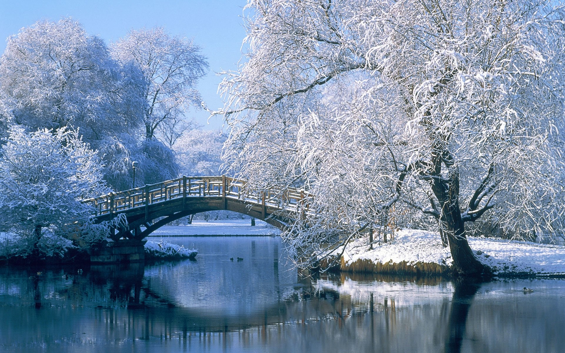 1920x1200 Photography - Winter Landscape Pond Water Bridge Tree Reflection Snow  Wallpaper