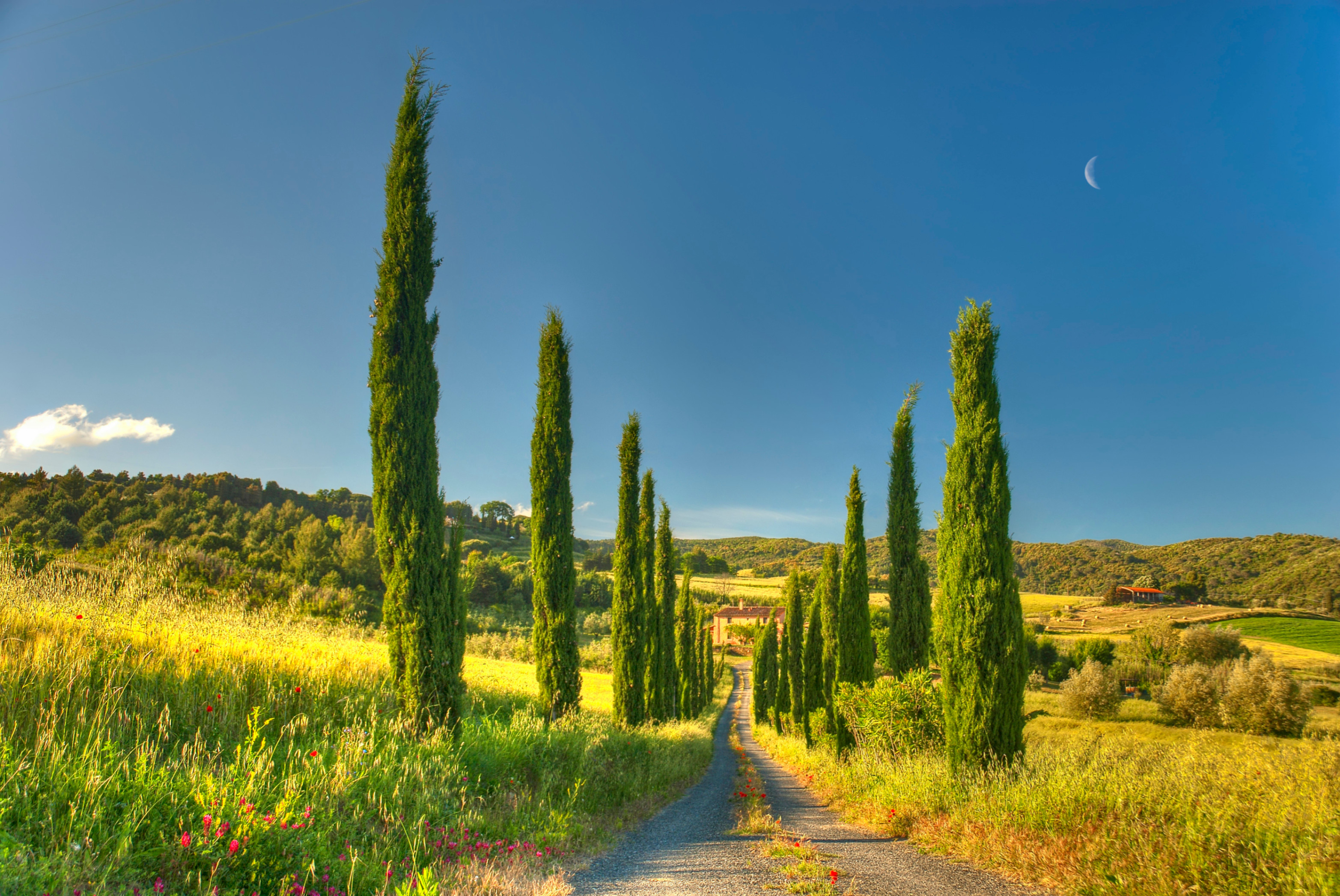3130x2094 Landscapes - House Tuscany Cottage Country Villa Road Nature Wallpapers  Photos for HD 16:9