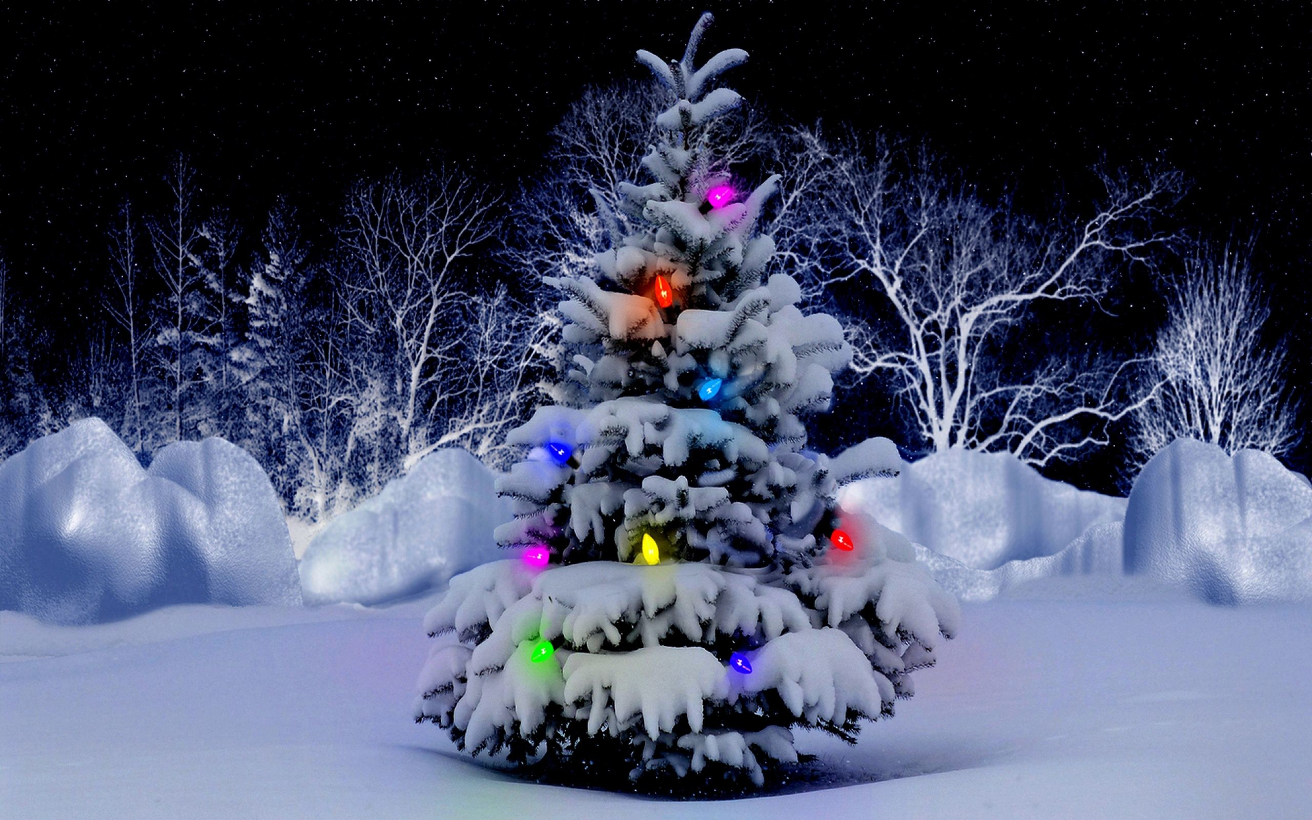 705021 snowy christmas backgrounds 2560x1600 for retina
