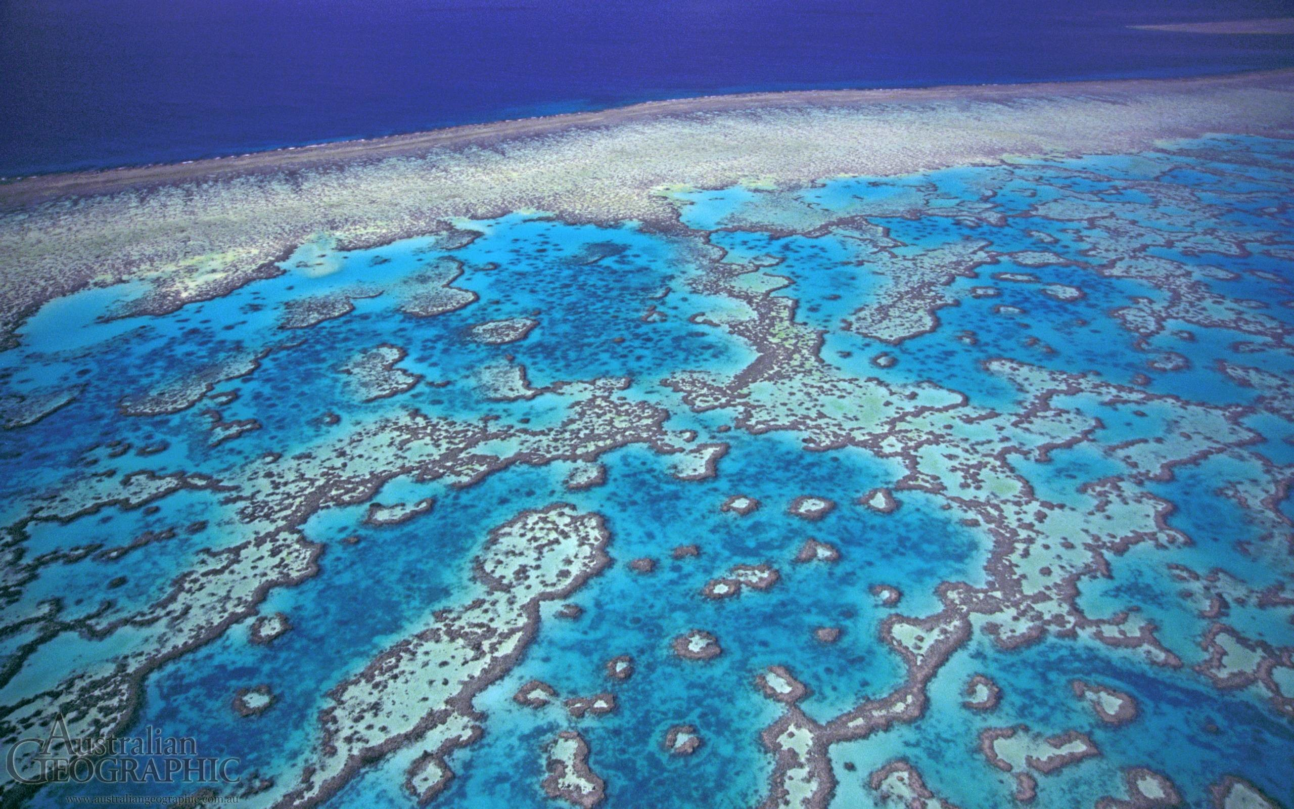 2560x1600 Great Barrier Reef Wallpaper 3 40902 Images HD Wallpapers .