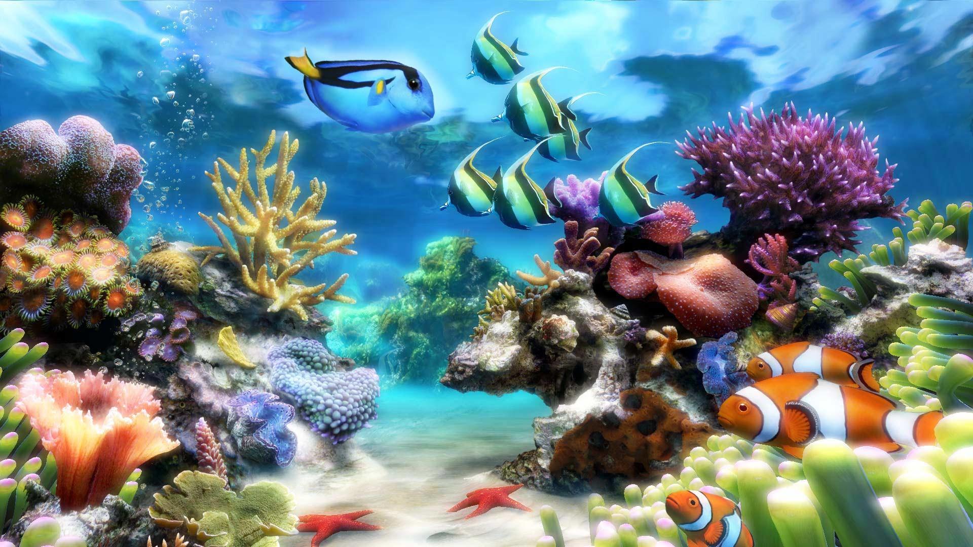 Animated aquarium desktop wallpaper 53 images - Fish tank screensaver pc free ...
