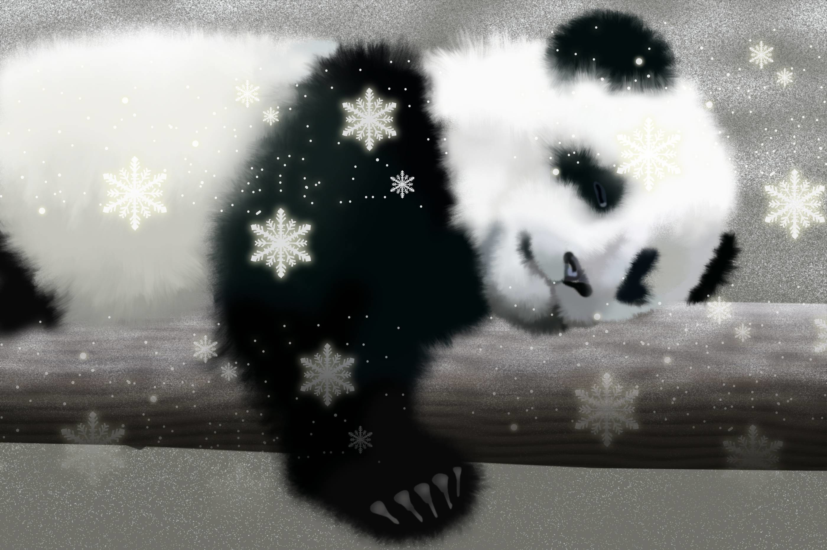 2800x1863 Animals For > Cute Baby Panda Wallpaper For Ipad