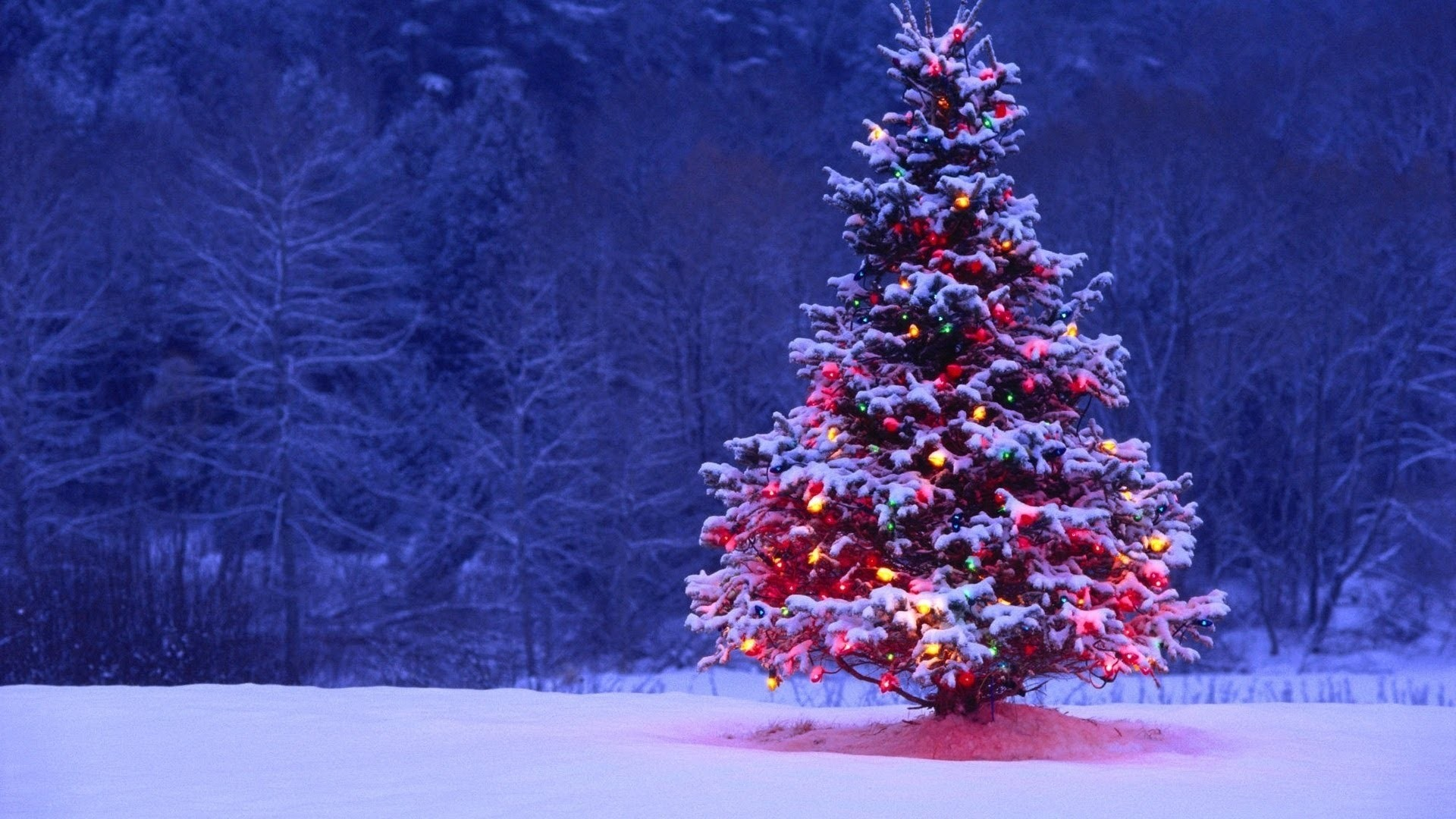 1920x1080 Christmas iPhone Wallpaper | Christmas Tree Wallpaper iPhone App Review