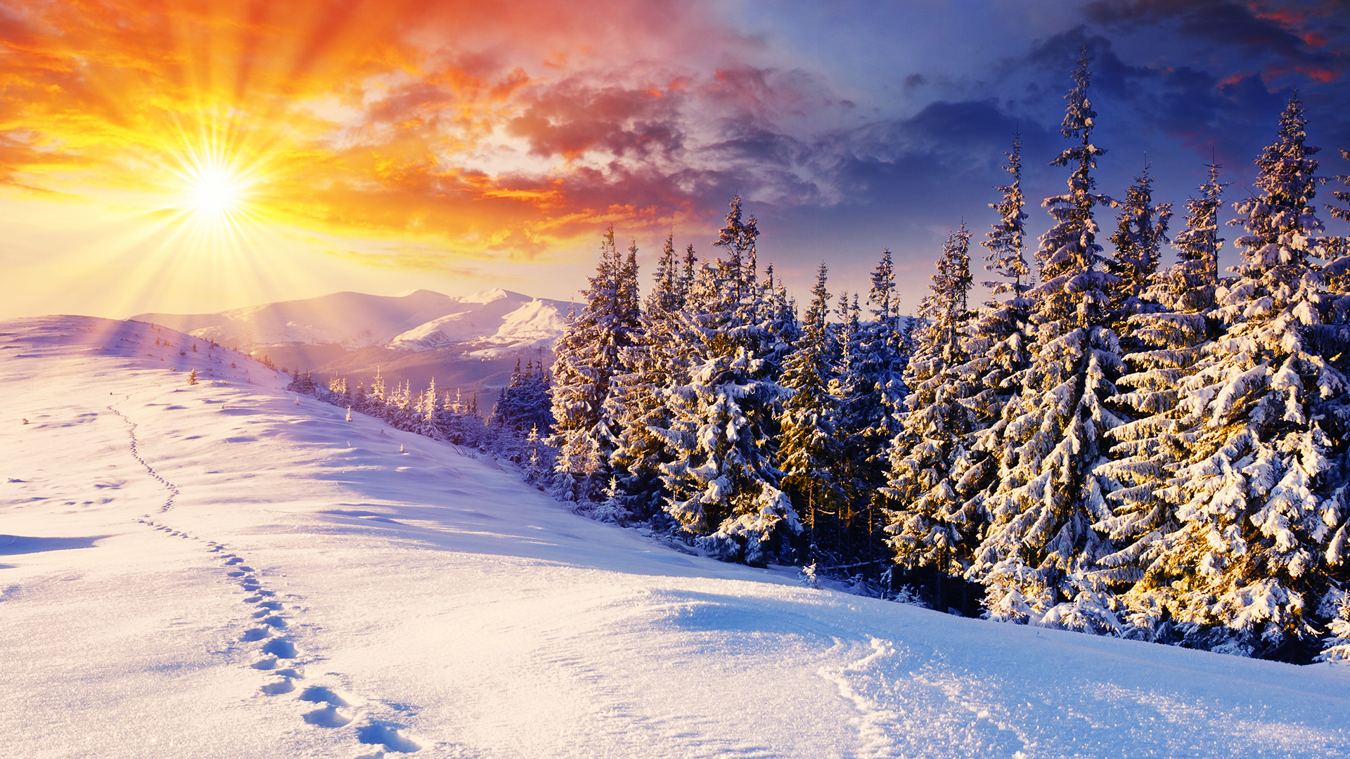1920x1080 Free Winter Background Images