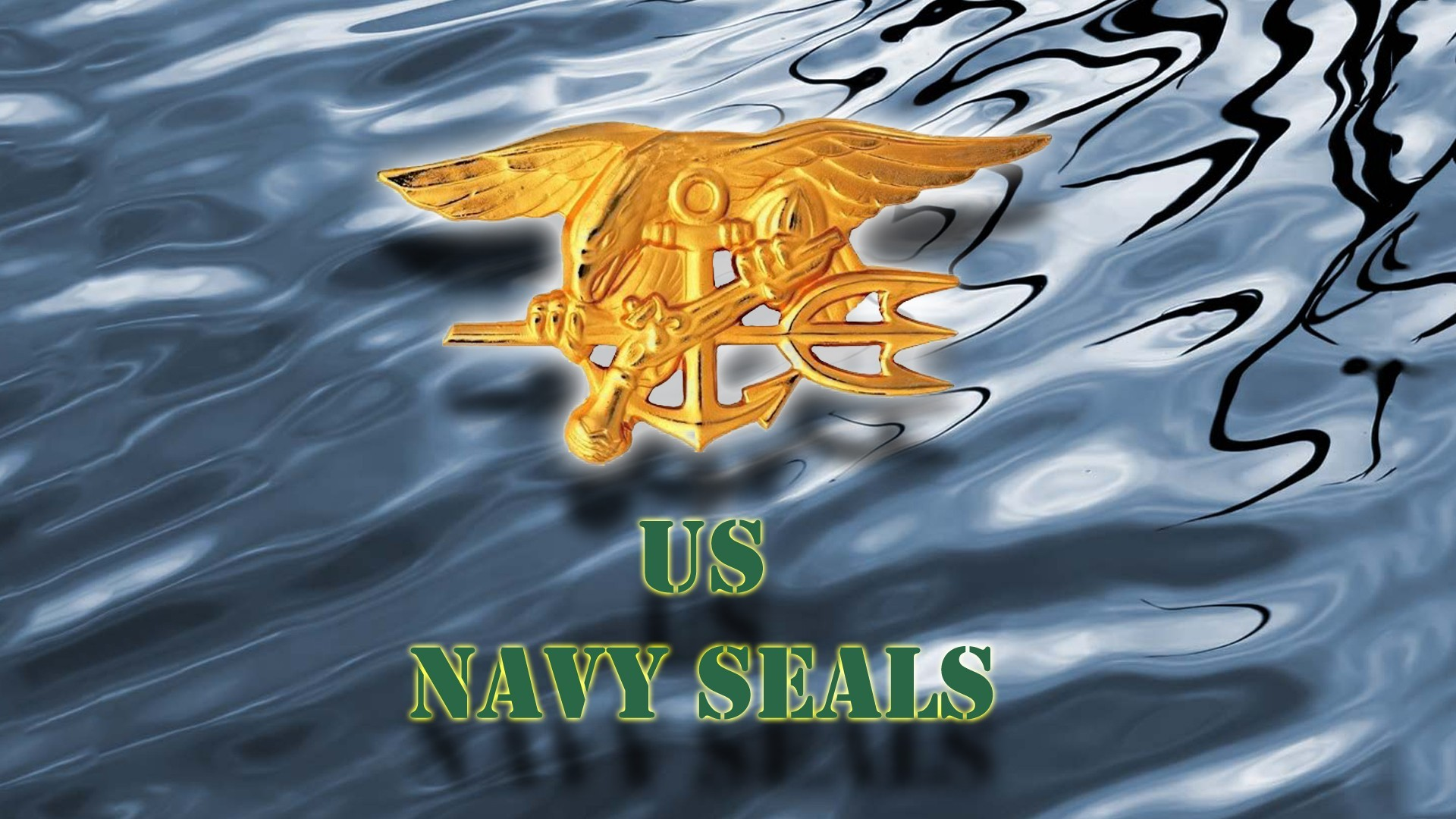 1920x1080 Navy Seals Logo Wallpaper