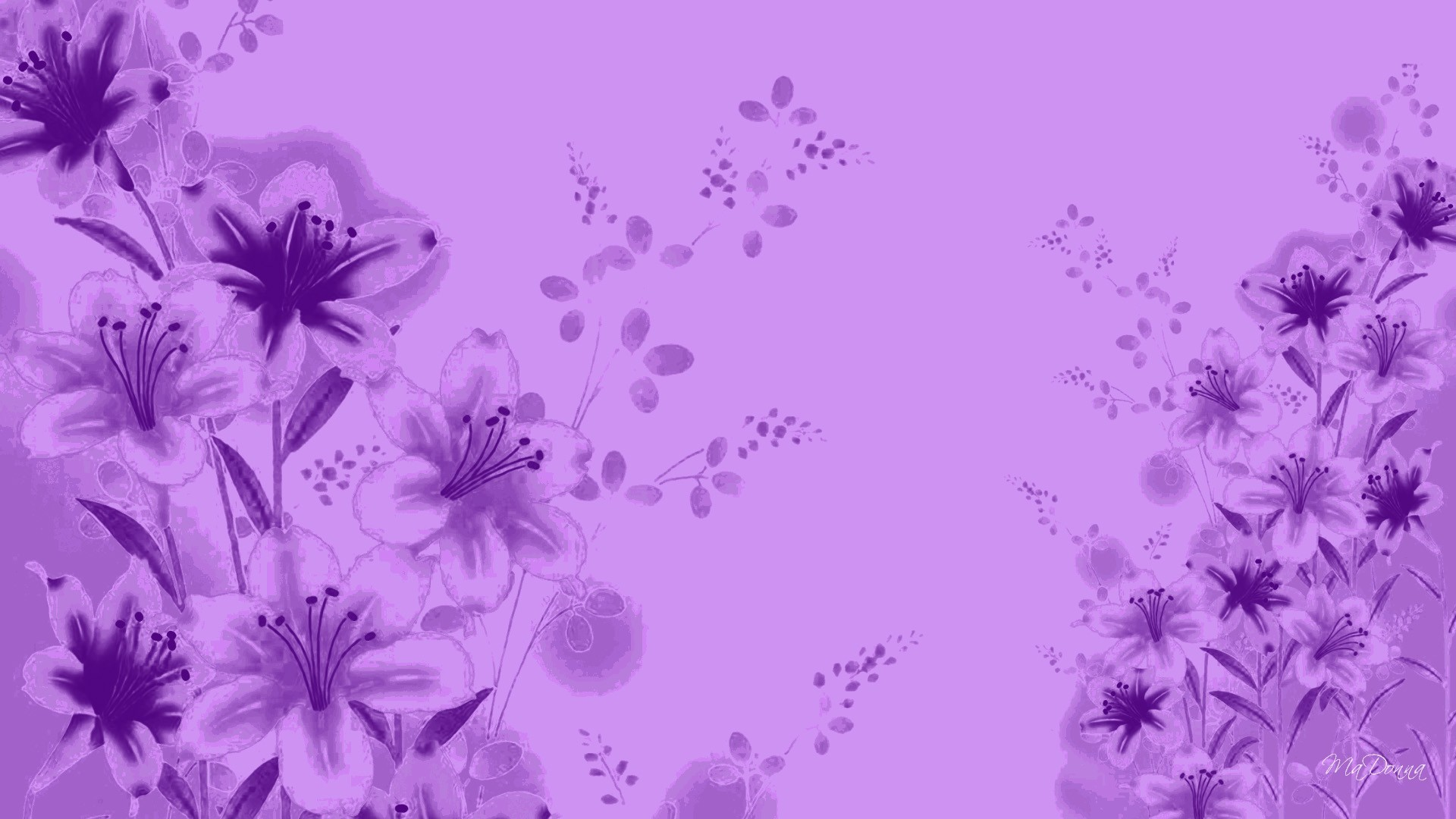 1920x1080 Lavender Colour Wallpaper - Wallpaper, High Definition, High Quality .
