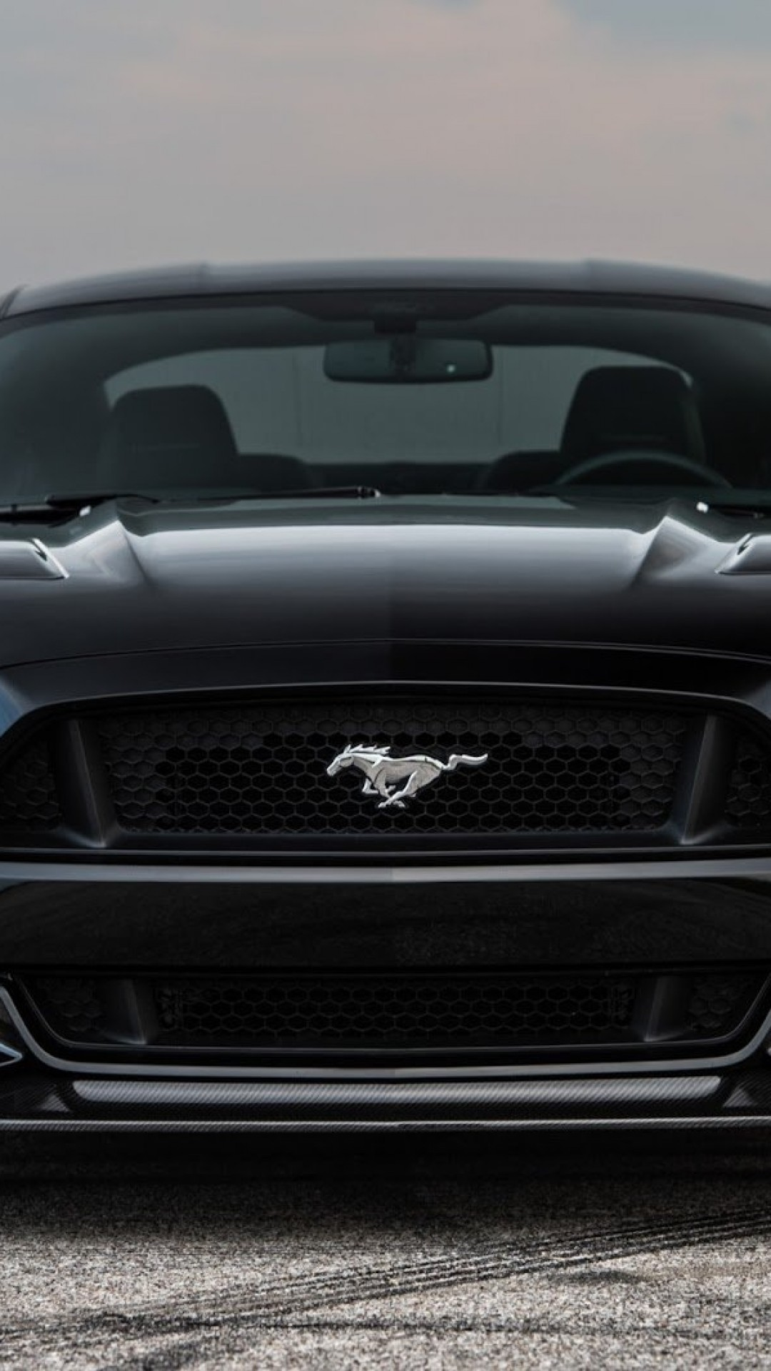2560x1600 Wallpapers For Ford Mustang Logo Wallpaper Iphone