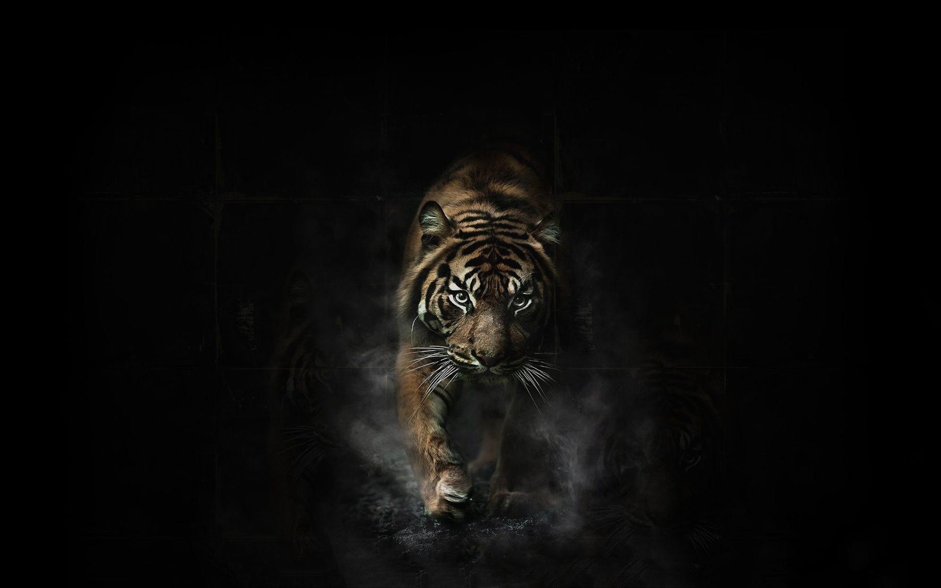mac os tiger wallpaper hd