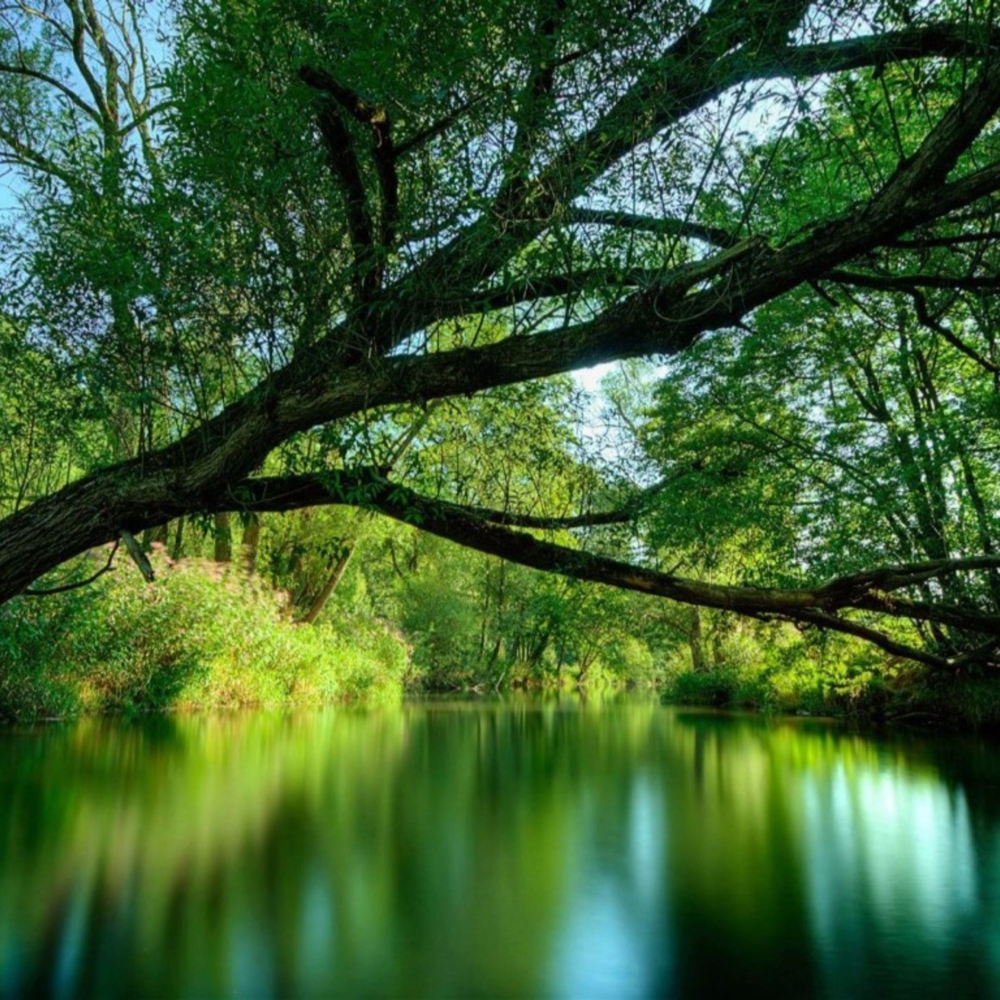 Peaceful Nature Wallpaper (38+ Images
