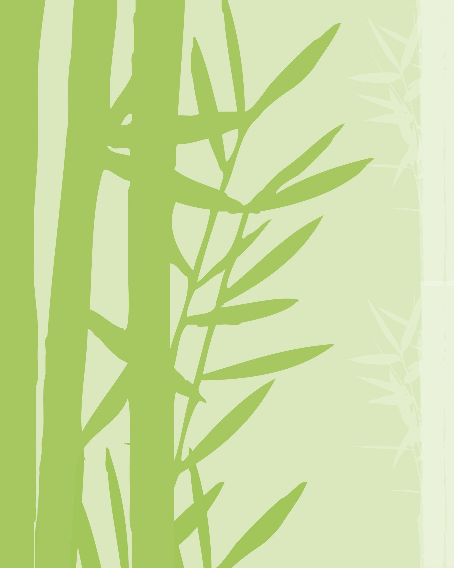 1535x1920 Bamboo Background Wallpaper