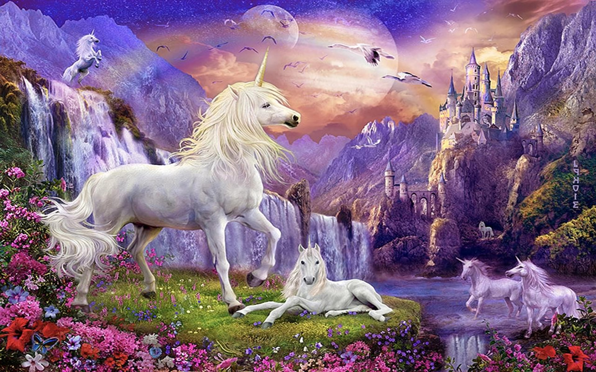 Unicorn backgrounds for desktop 69 images 2835x1984 full hd bestblackwild life background unicorn amazing magic high definiton tail griva blue 4k2835x1984 wallpaper hd voltagebd Images