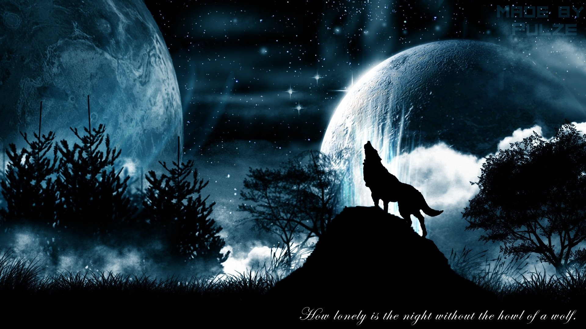 1920x1080 ... Most Beautiful Full HD Wallpaper Collection Wolves Wallpapers