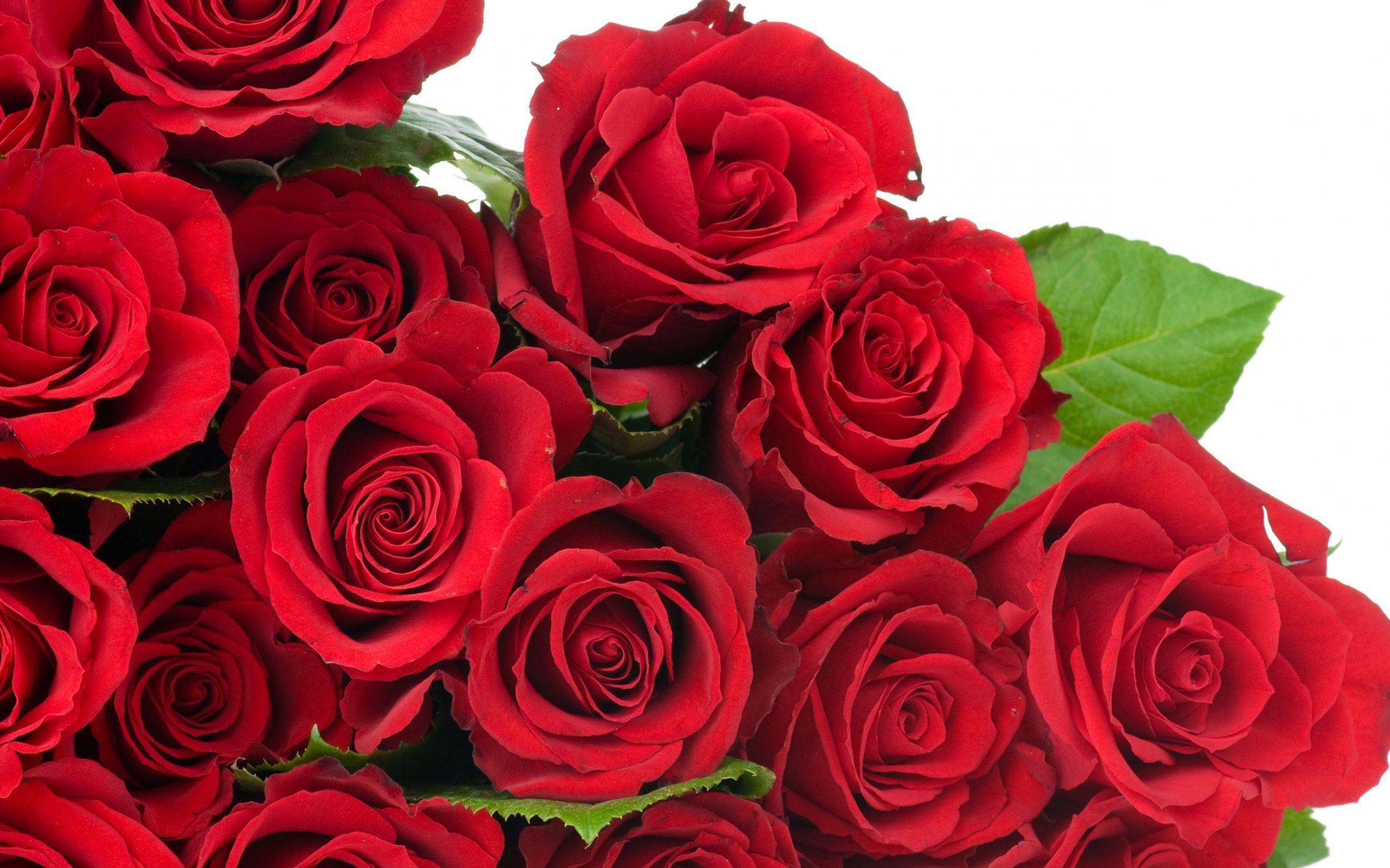 1920x1080 Wallpaper Bouquet Composition Beautiful Roses Flowers