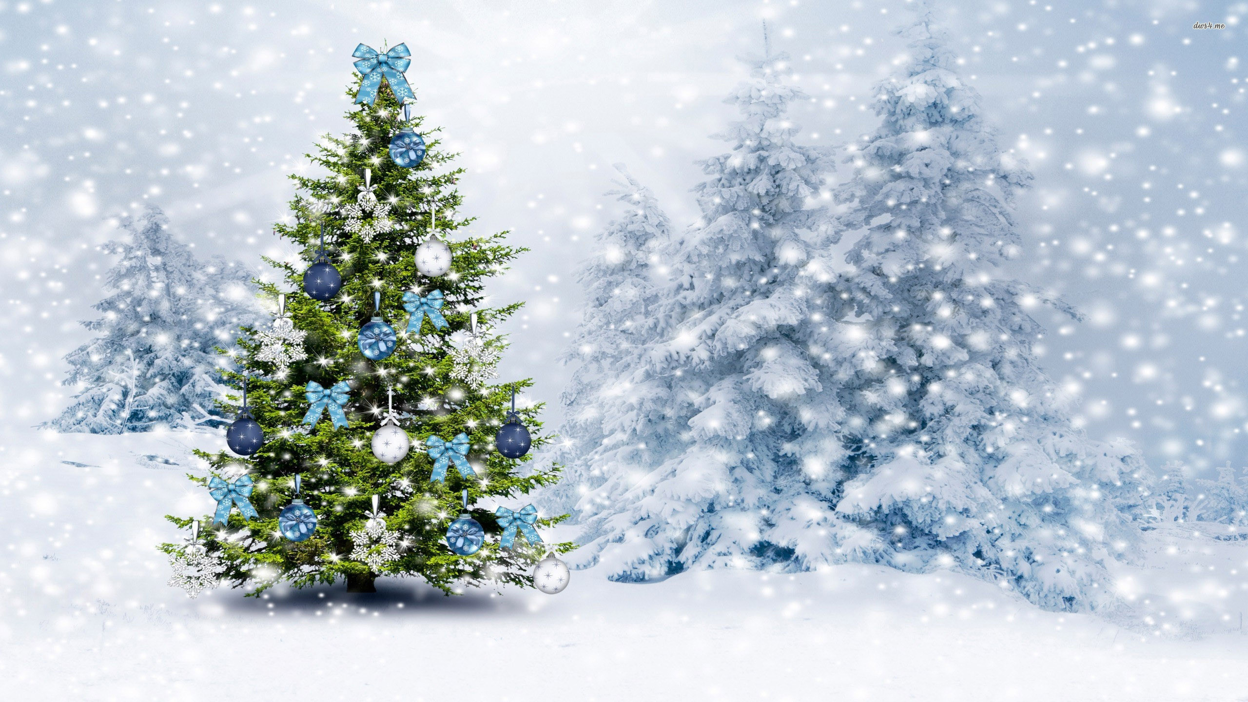 1920x1200 Snowy Christmas Tree Wallpapers