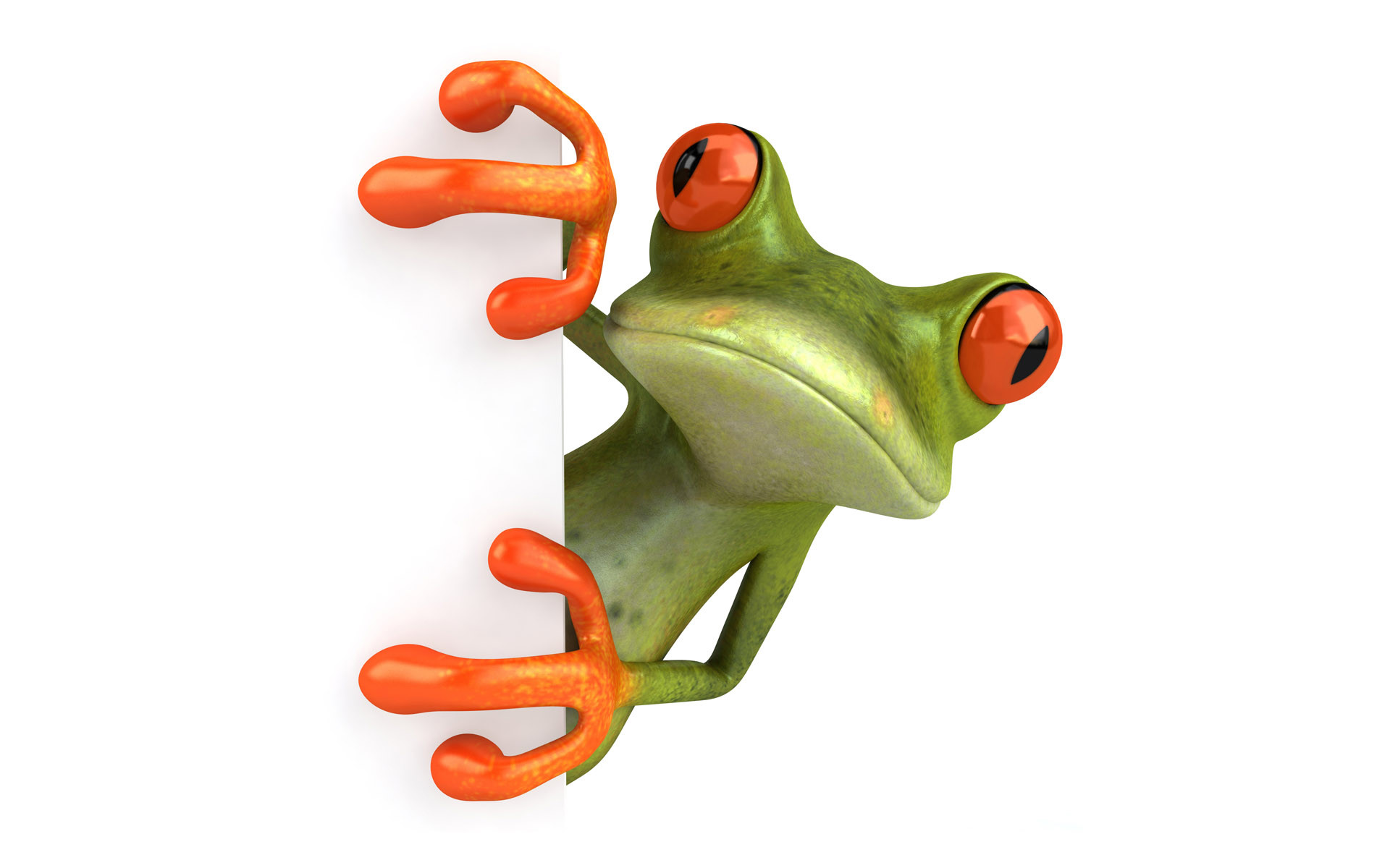 Animated frog wallpaper 55 images - Frog cartoon wallpaper ...