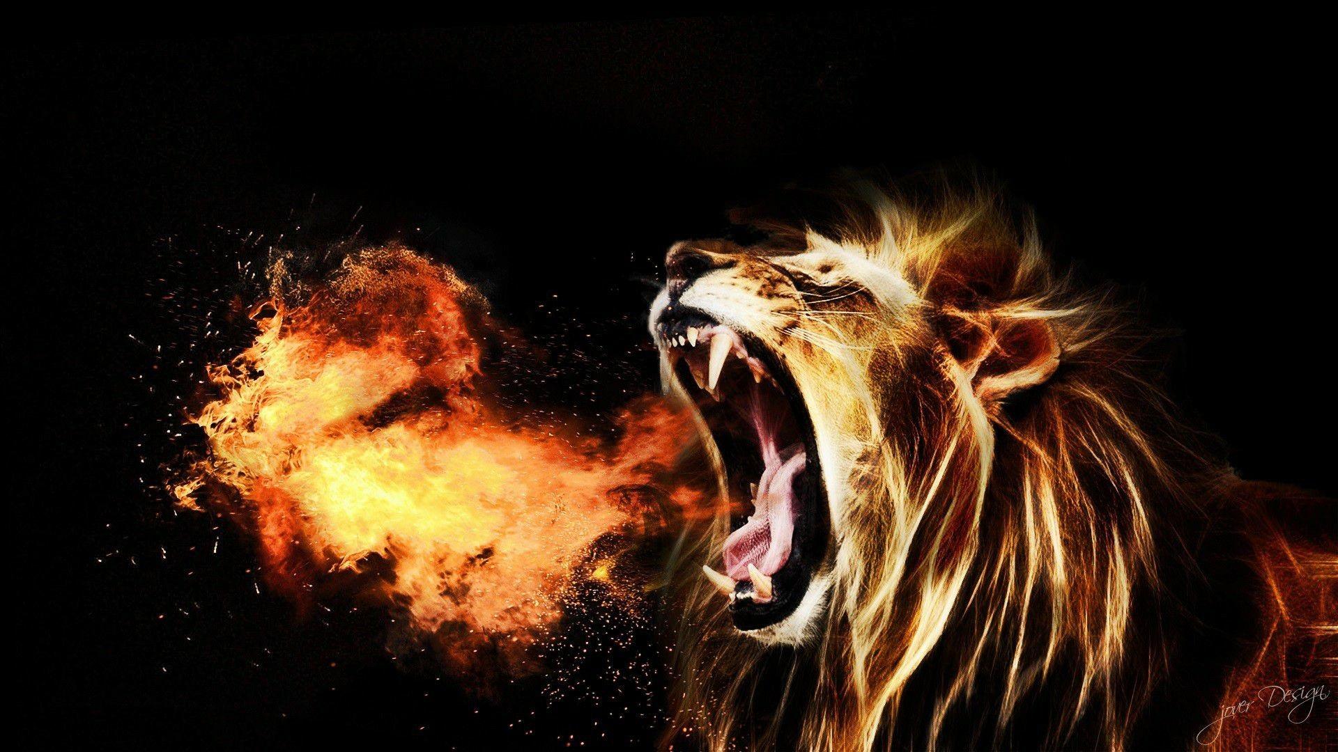Best 25 Lion Hd Wallpaper Ideas On Pinterest: Roaring Lion Wallpaper (67+ Images