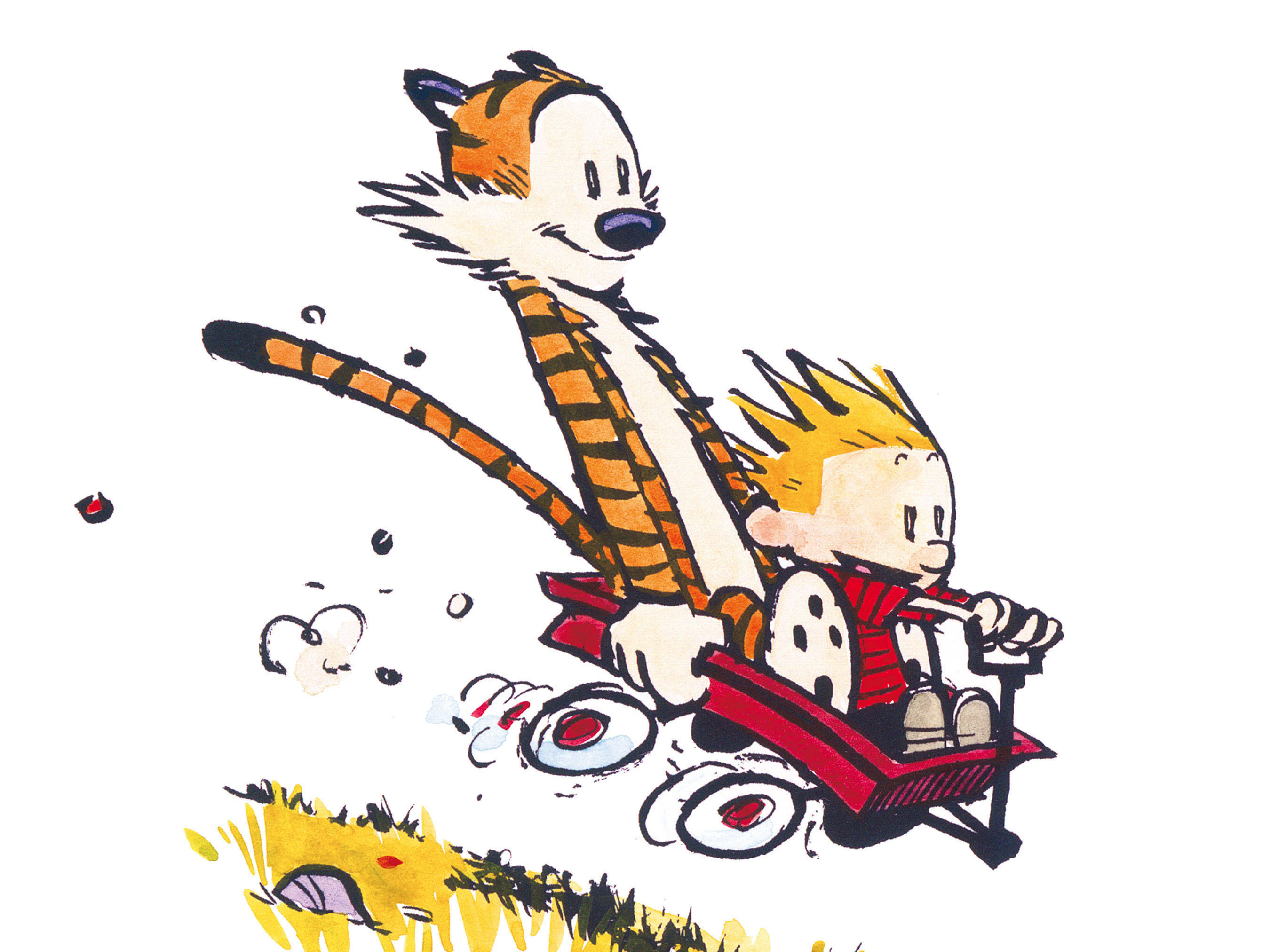 2700x2025 Calvin and Hobbes Calvin and Hobbes39 creator Bill Watterson Business  Insider